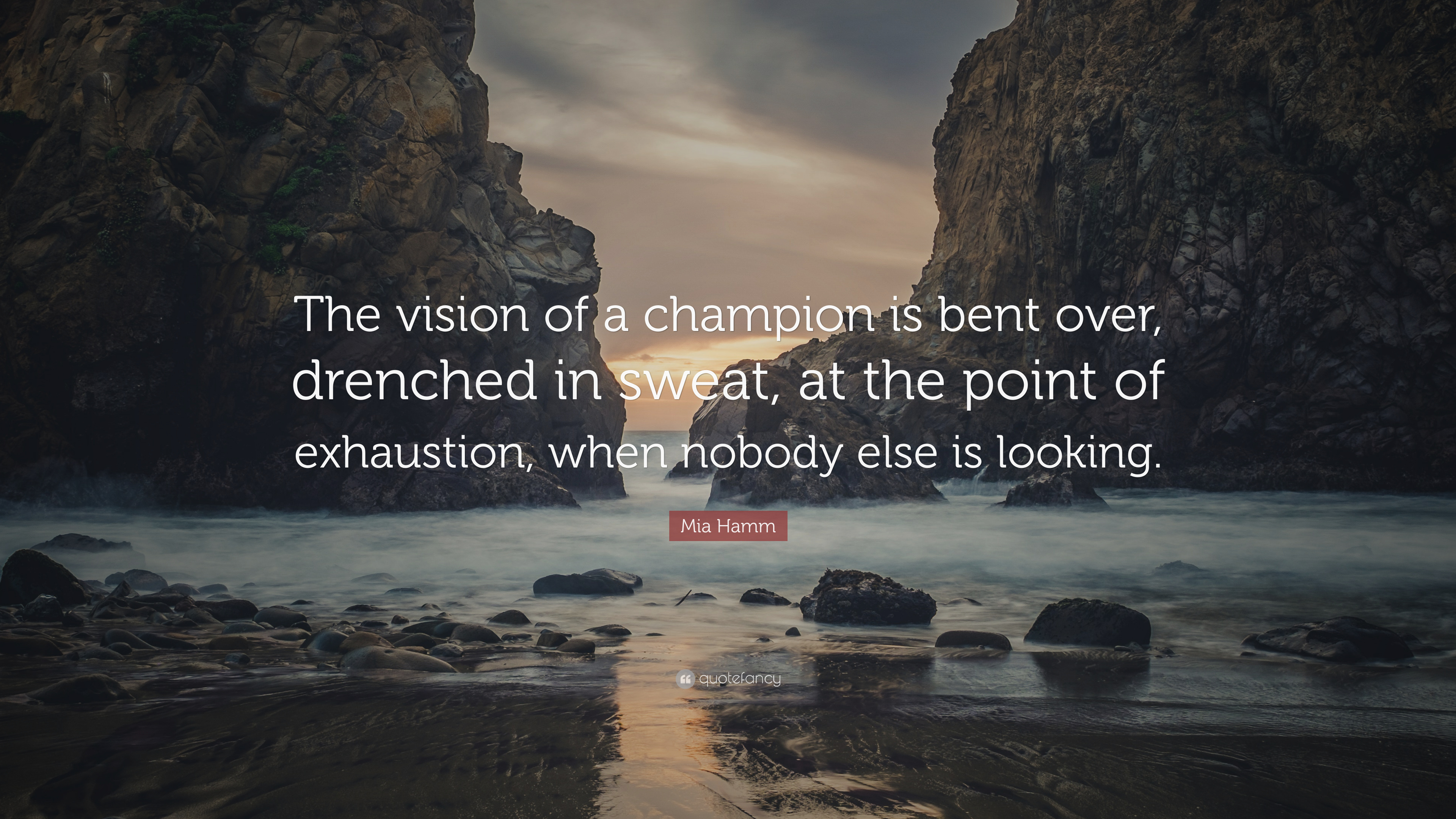 Mia Hamm Quote The Vision Of A Champion Is Bent Over Drenched In Sweat At The Point Of Exhaustion When Nobody Else Is Looking 7 Wallpapers Quotefancy