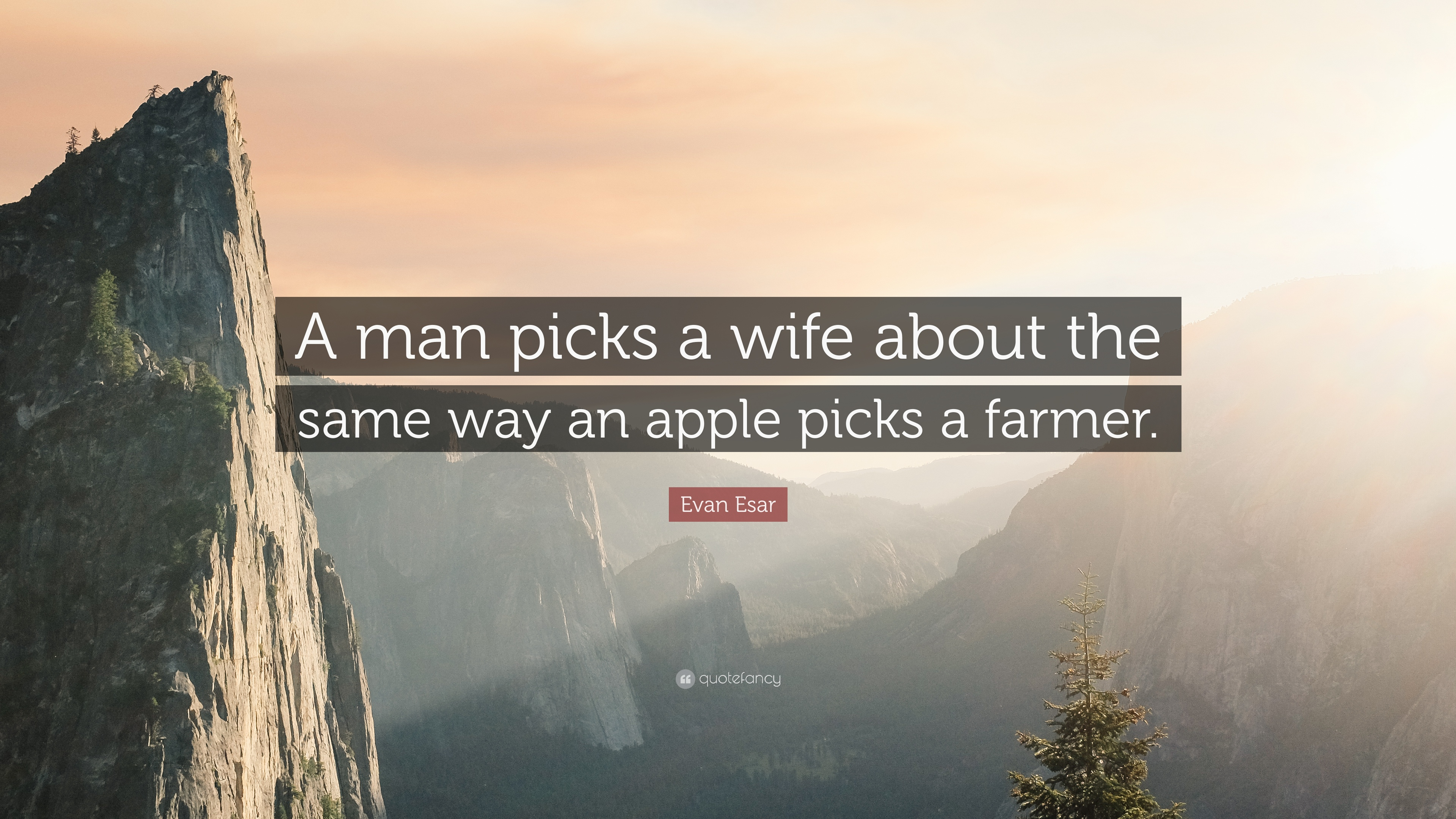 Evan Esar Quote A Man Picks Wife About The Same Way An Apple