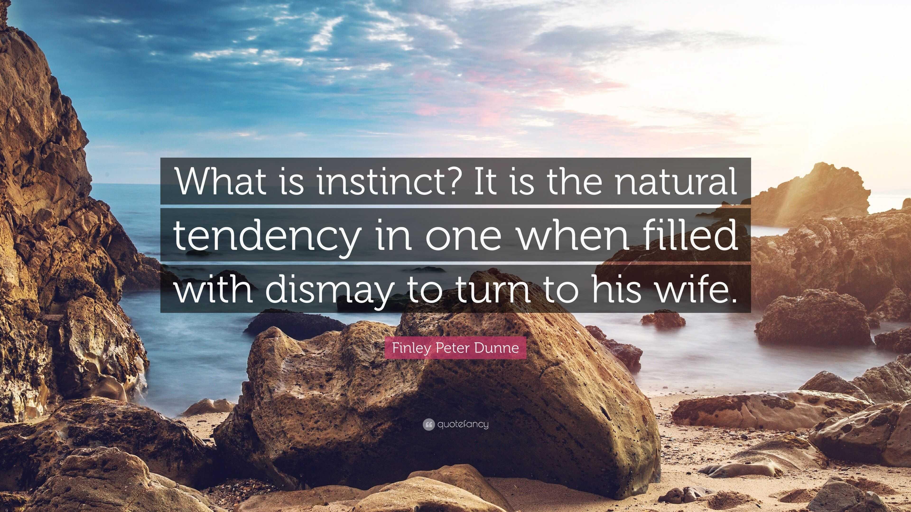 What is instinct 58