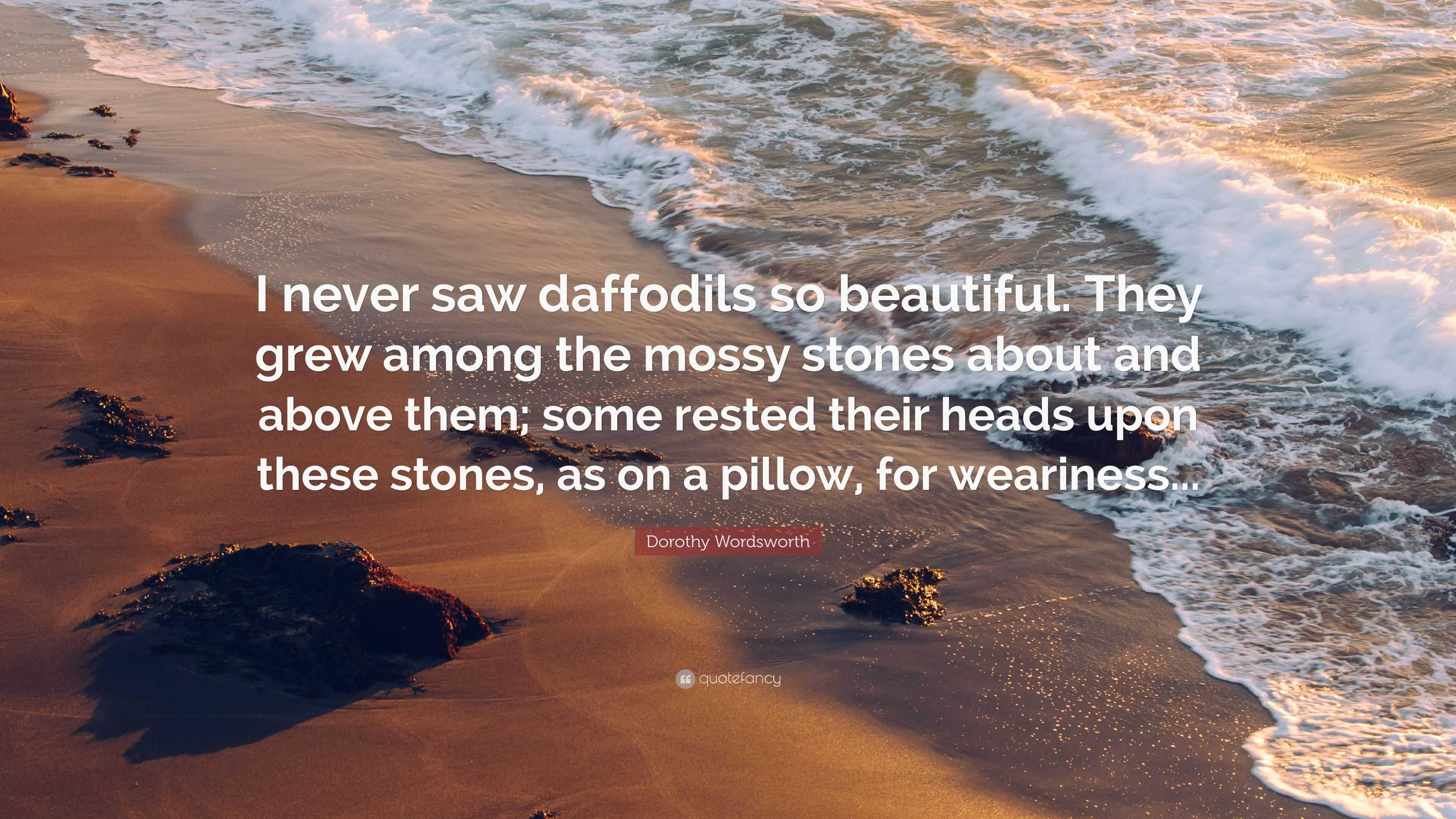 dorothy wordsworth daffodils