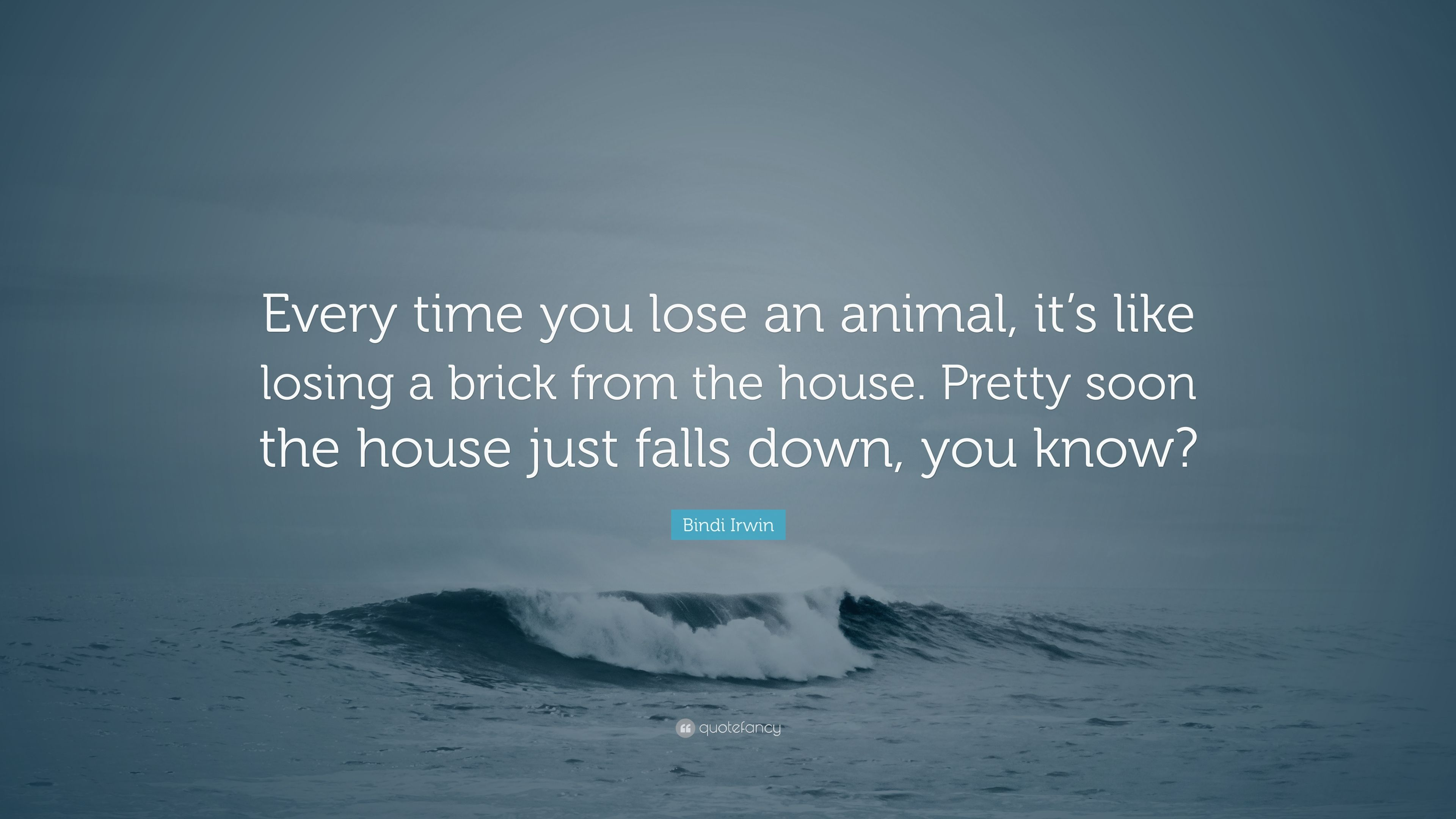 "Bindi Irwin Quote: ""Every Time You Lose An Animal, It's"
