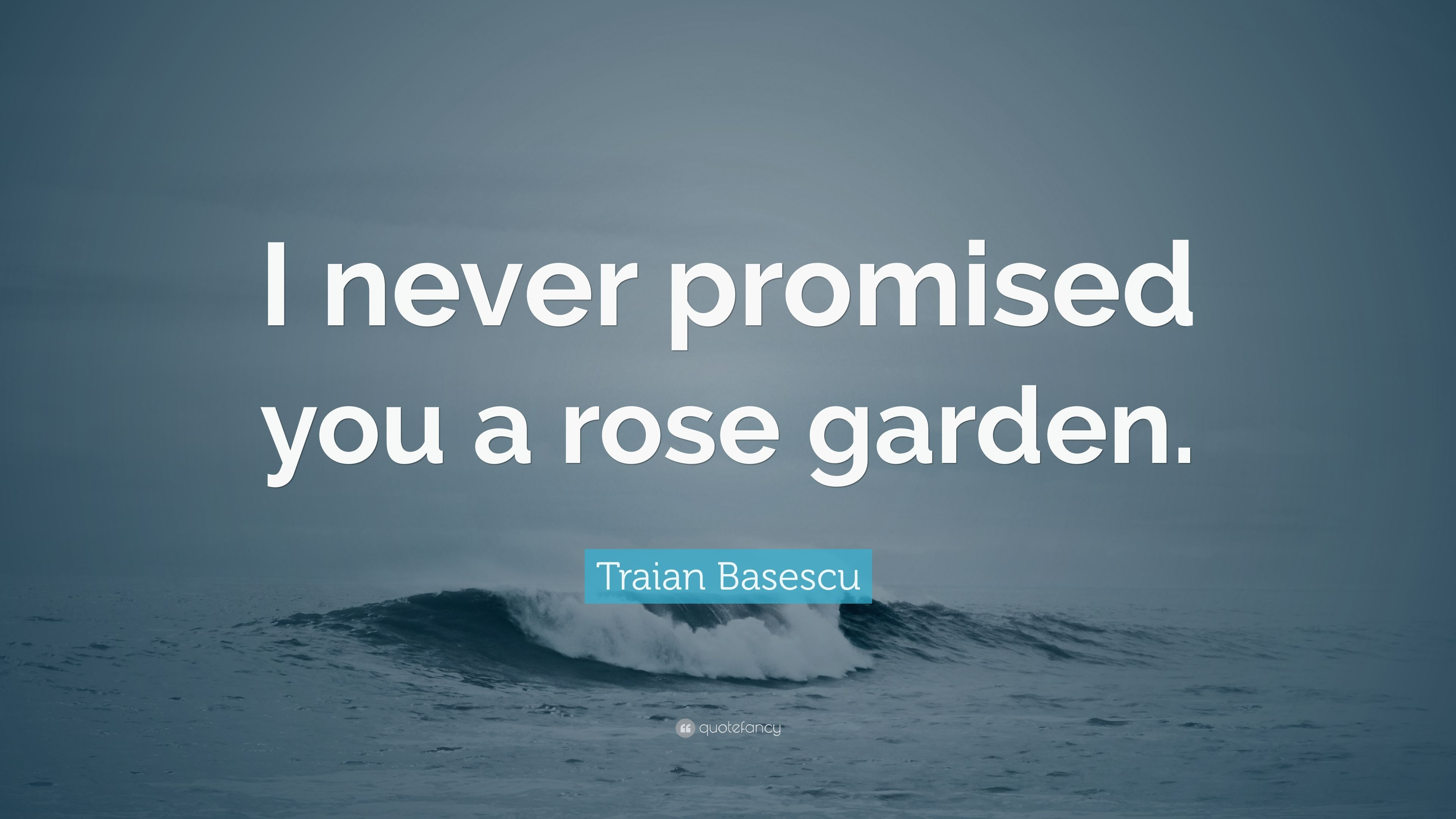 I Never Promised You A Rose Garden Summary Best Flowers And Rose 2017