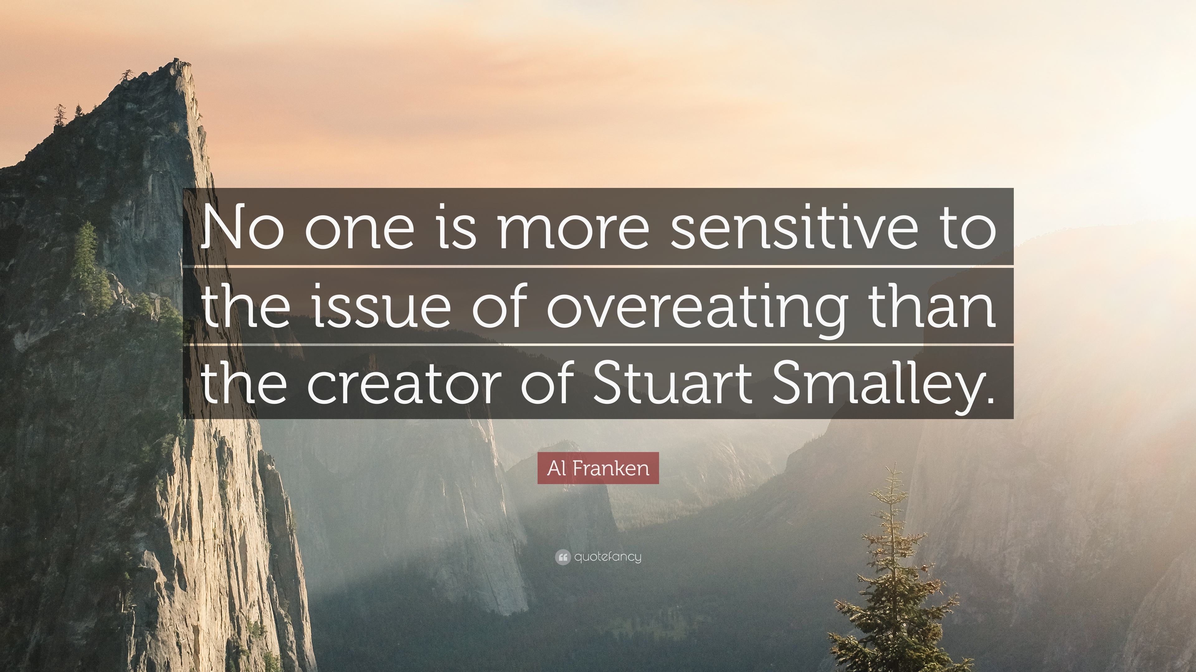 """Al Franken Quote: """"No one is more sensitive to the issue of ..."""