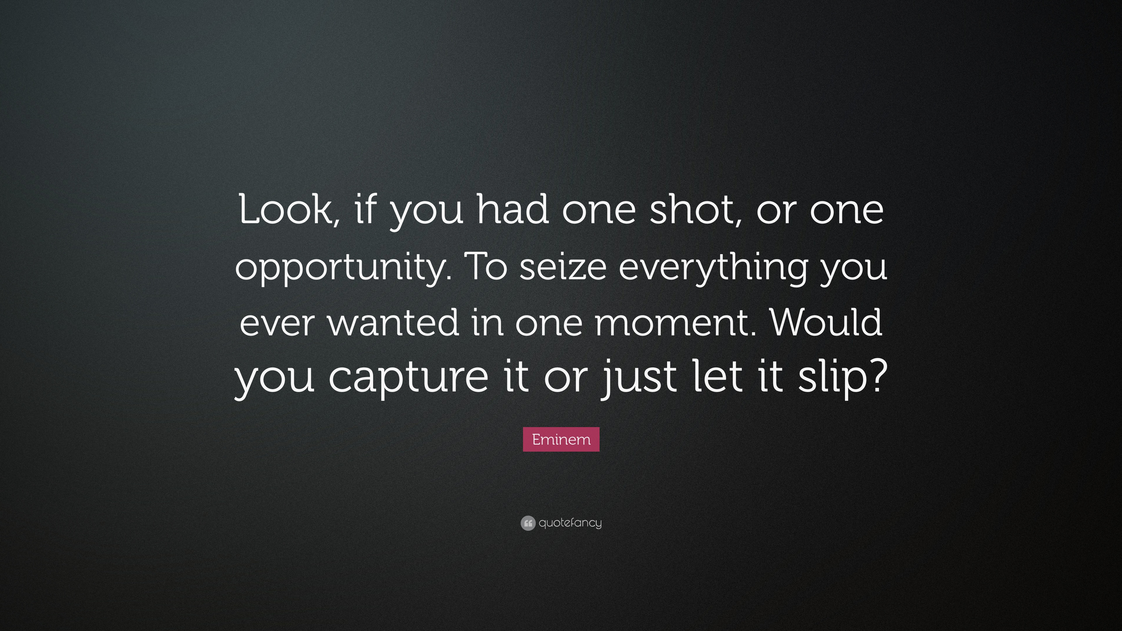 Eminem Quote Look If You Had One Shot Or One Opportunity To Seize Everything You Ever