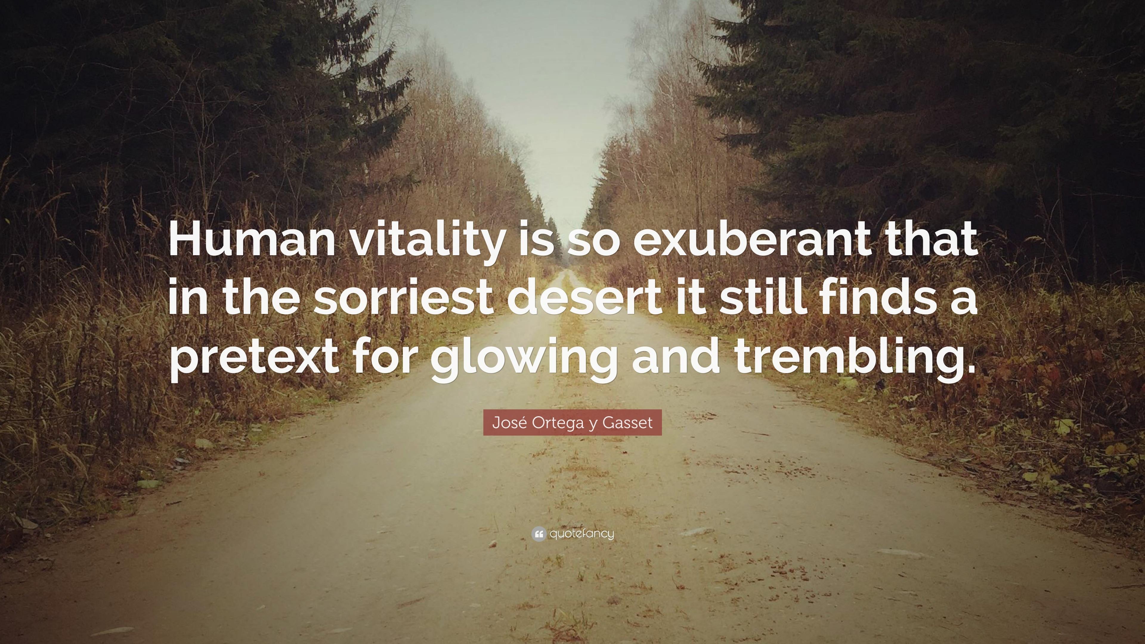 José Ortega Y Gasset Quote Human Vitality Is So Exuberant