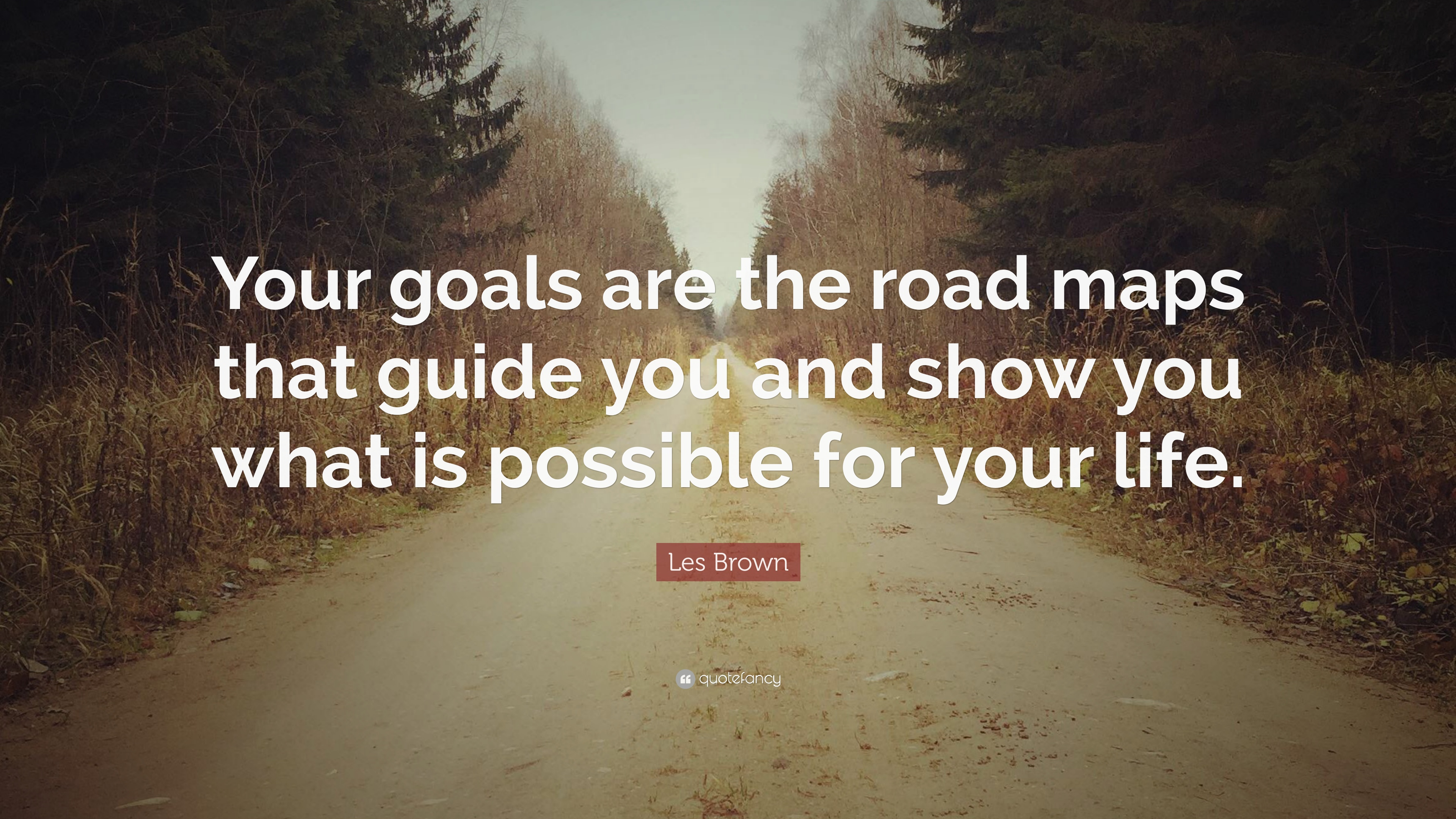 les brown quote your goals are the road maps that guide you and