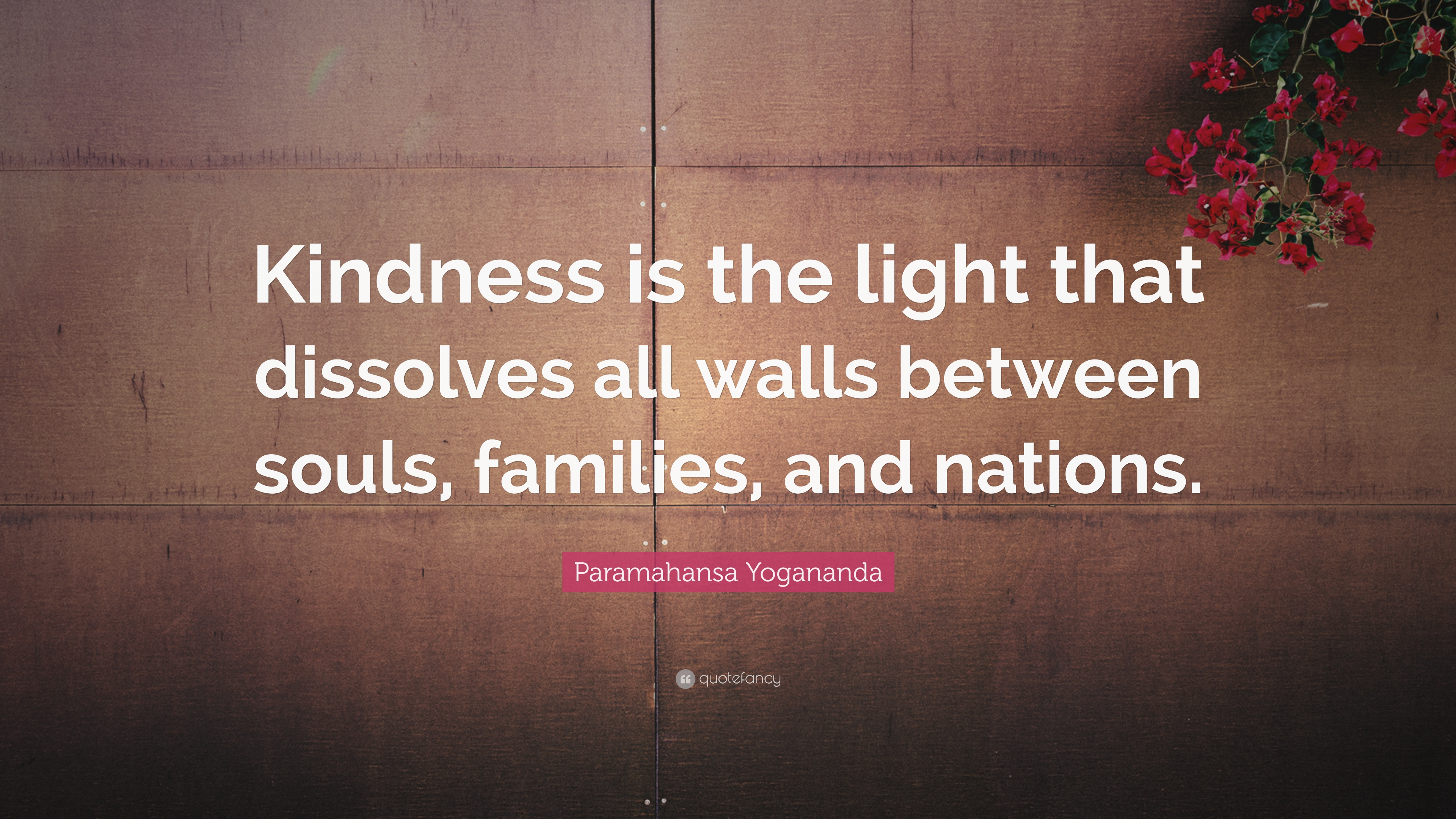 Quote About Kindness Entrancing Kindness Quotes 40 Wallpapers  Quotefancy