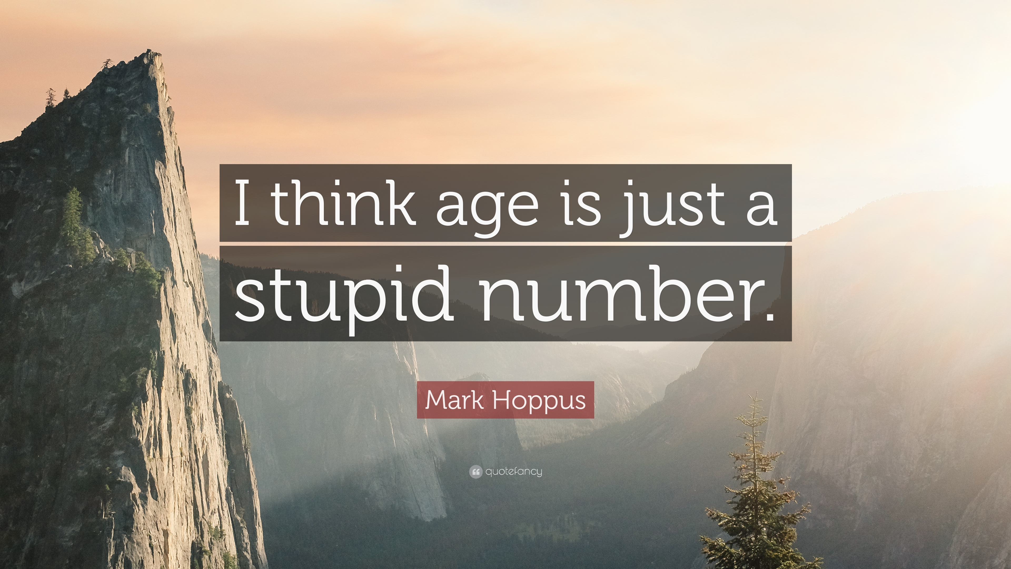 Mark Hoppus Quote I Think Age Is Just A Stupid Number 7