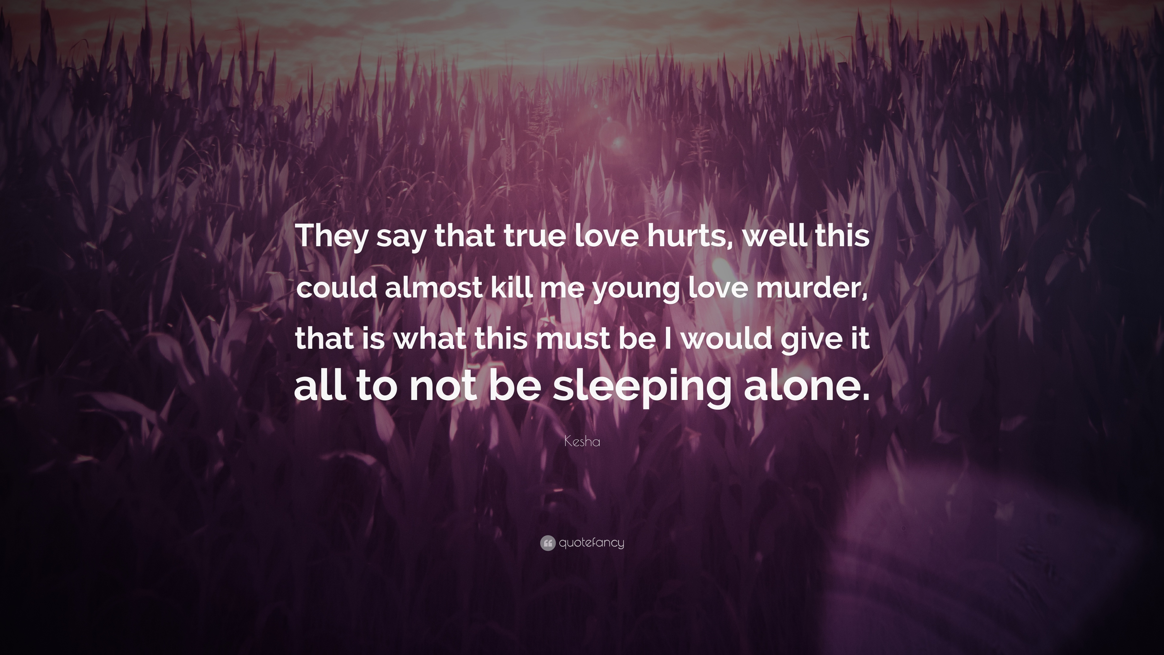 True Love Quotes Wallpaper: Love Hurts Images Photos Wallpapers
