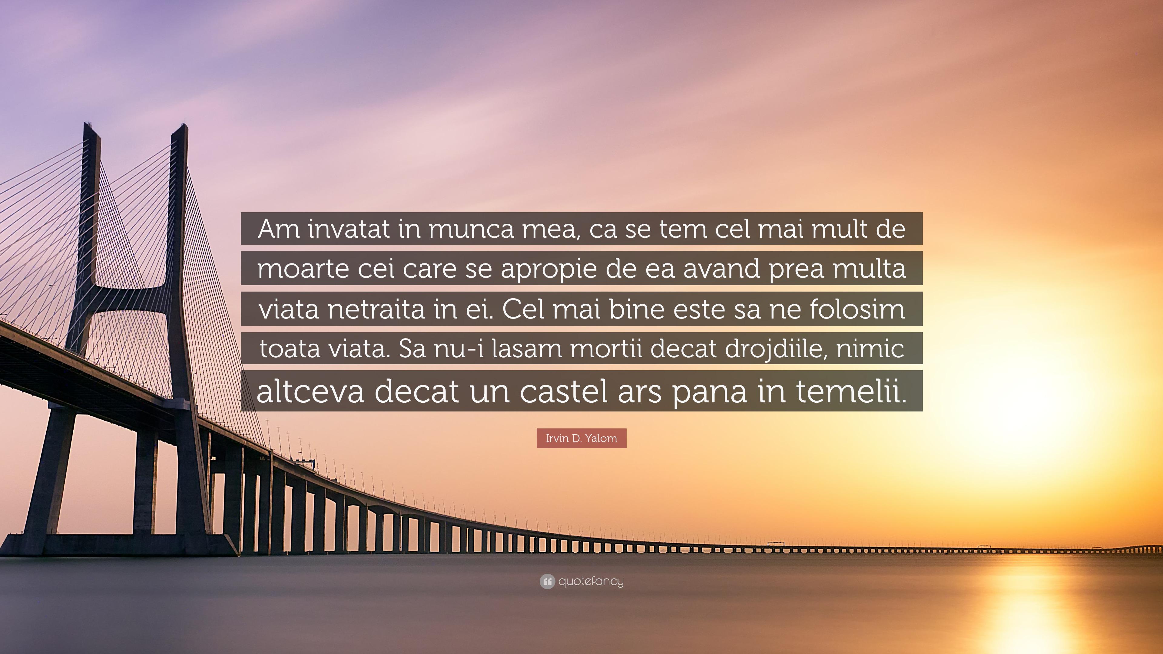 mai multă viață - Traducere în engleză - exemple în română | Reverso Context