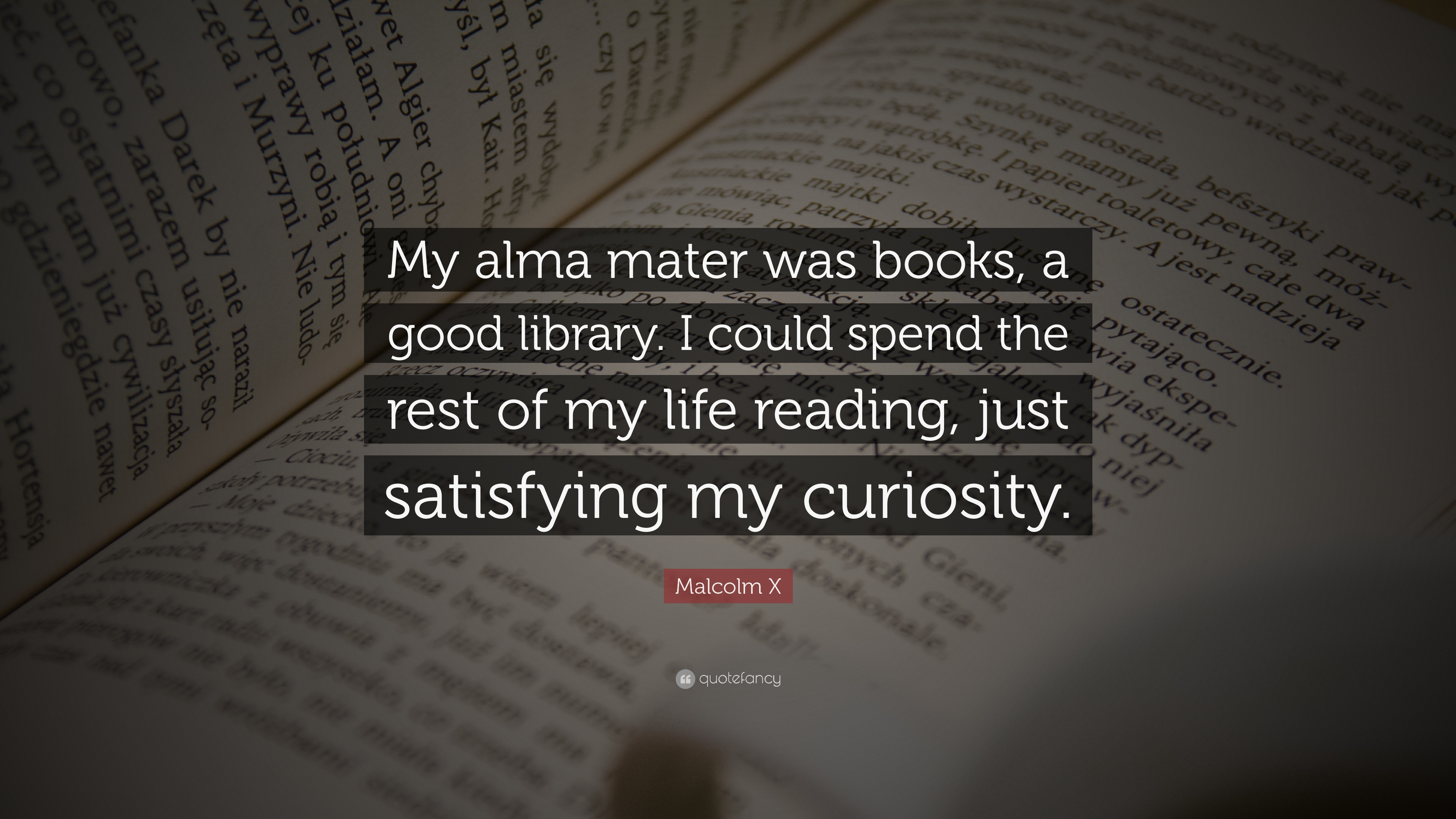 """Books With Quotes About Life Malcolm X Quote """"My Alma Mater Was Books A Good Libraryi Could"""
