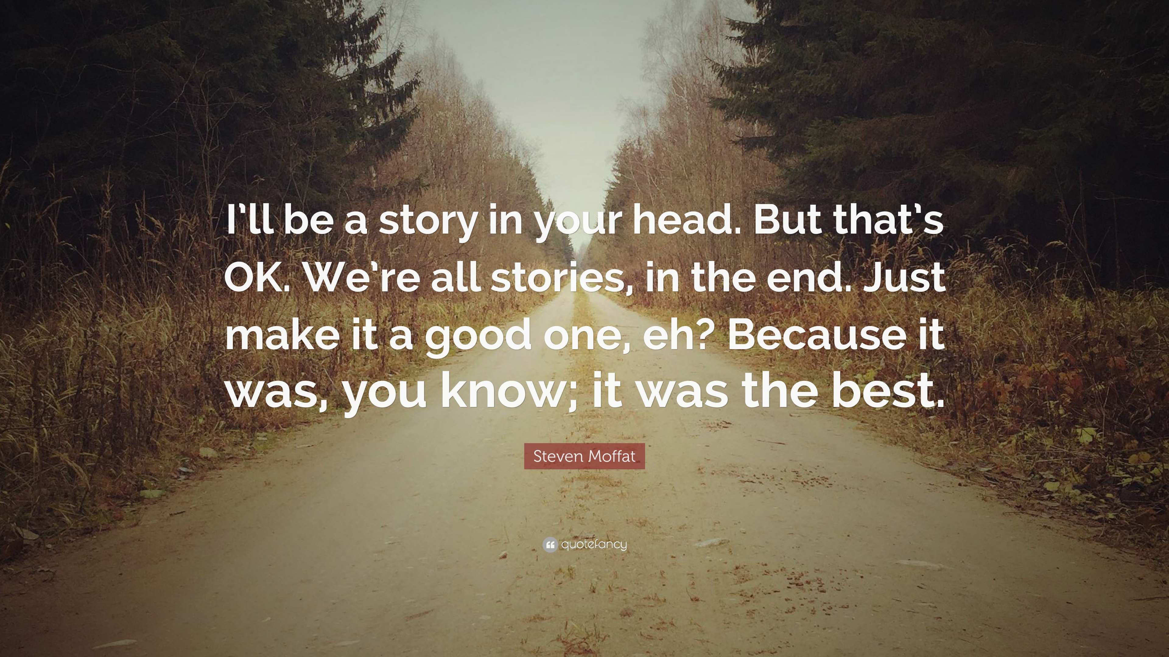 Steven Moffat Quote Ill Be A Story In Your Head But Thats Ok