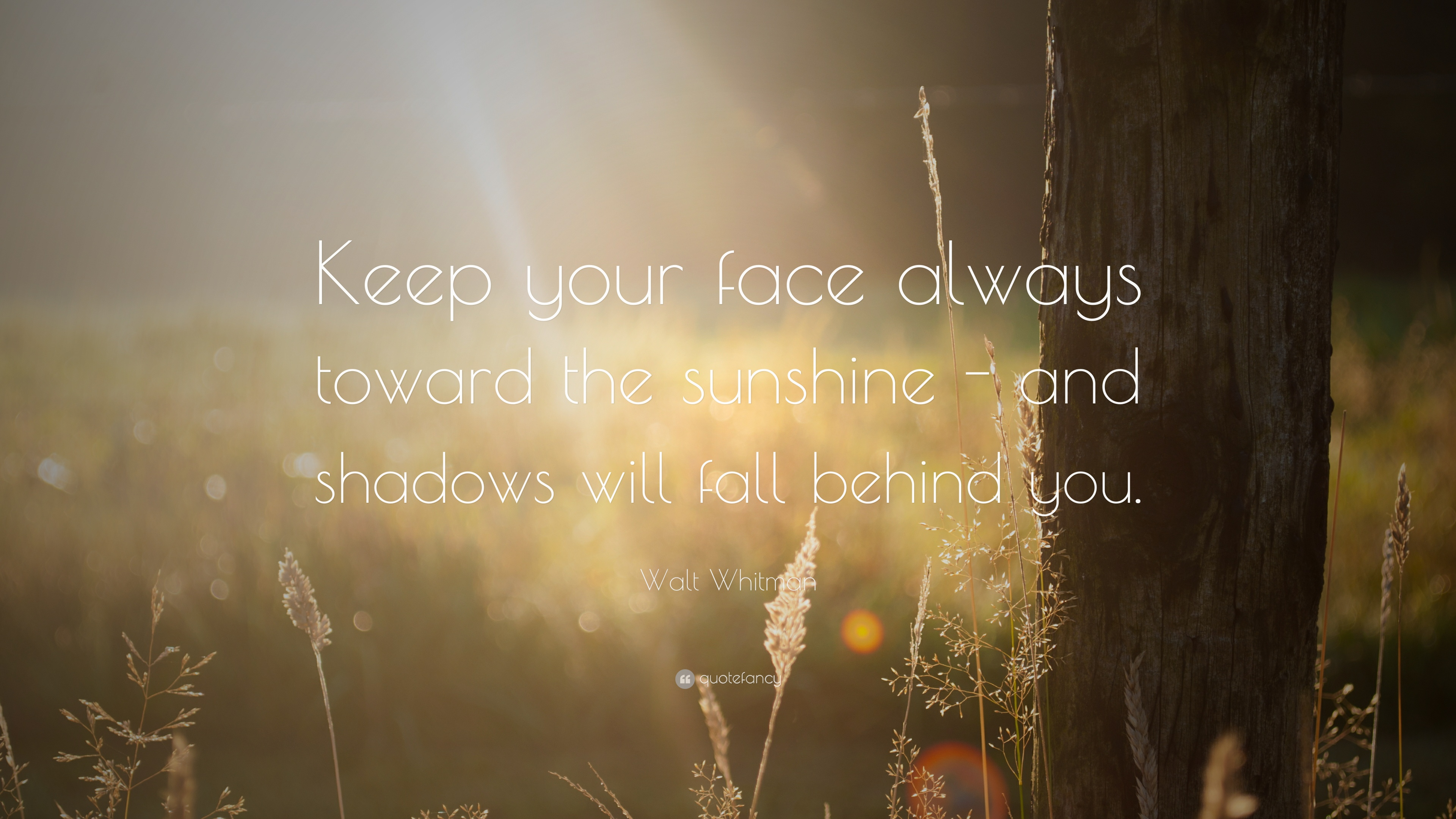 Walt Whitman Quote Keep Your Face Always Toward The Sunshine And