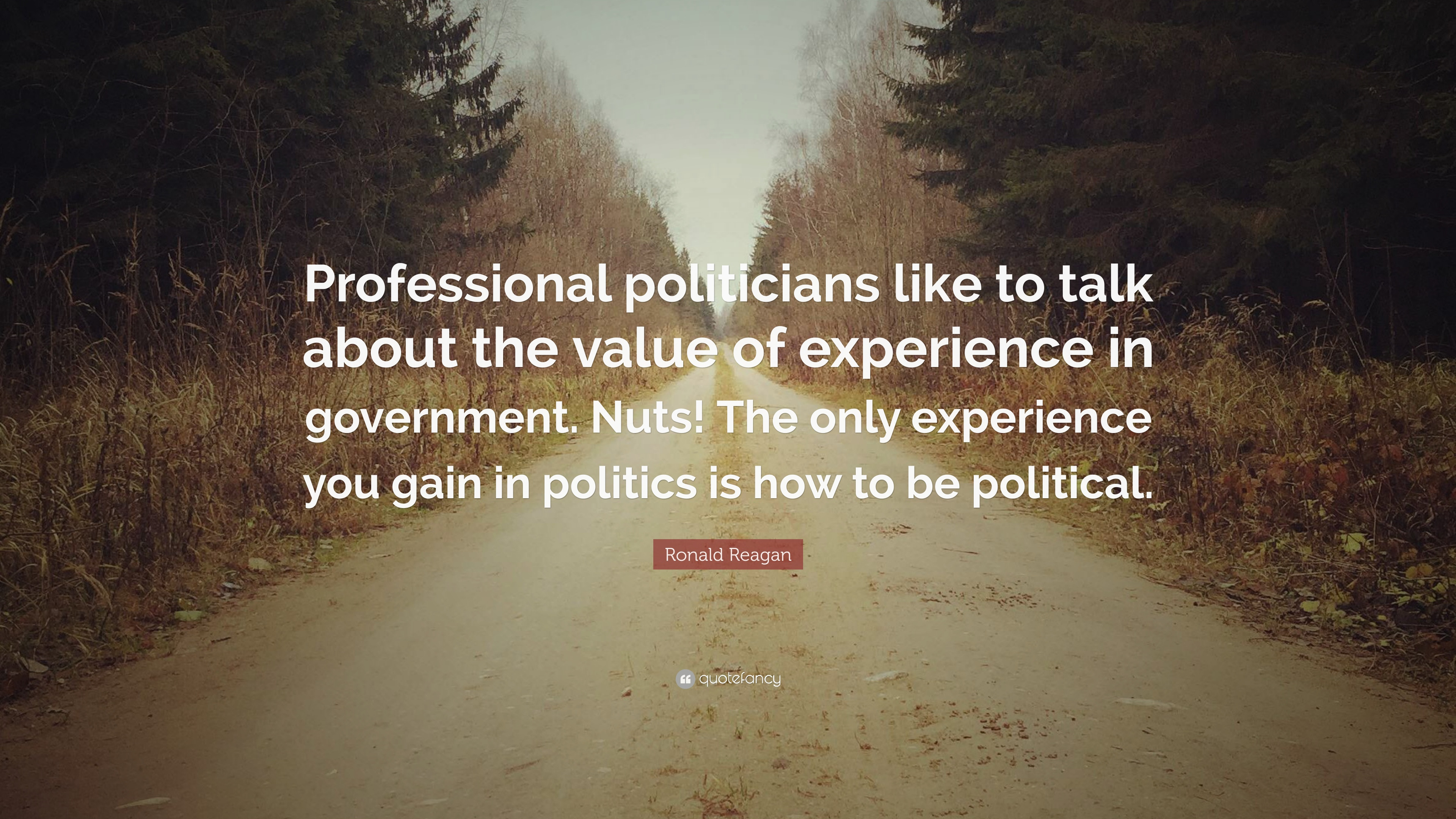 "ronald reagan quote ""professional politicians like to talk about"