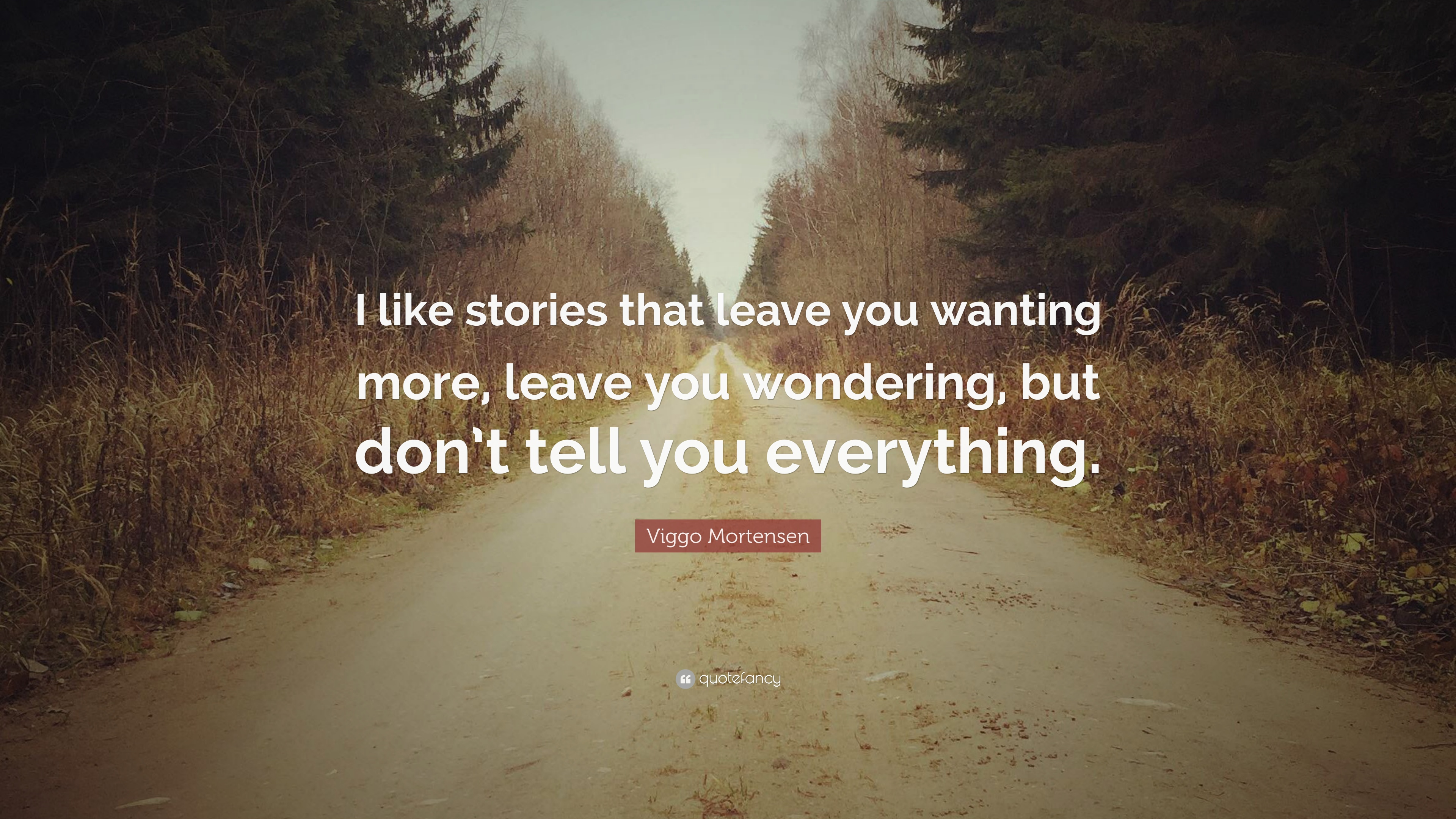 Viggo Mortensen Quote I Like Stories That Leave You Wanting More
