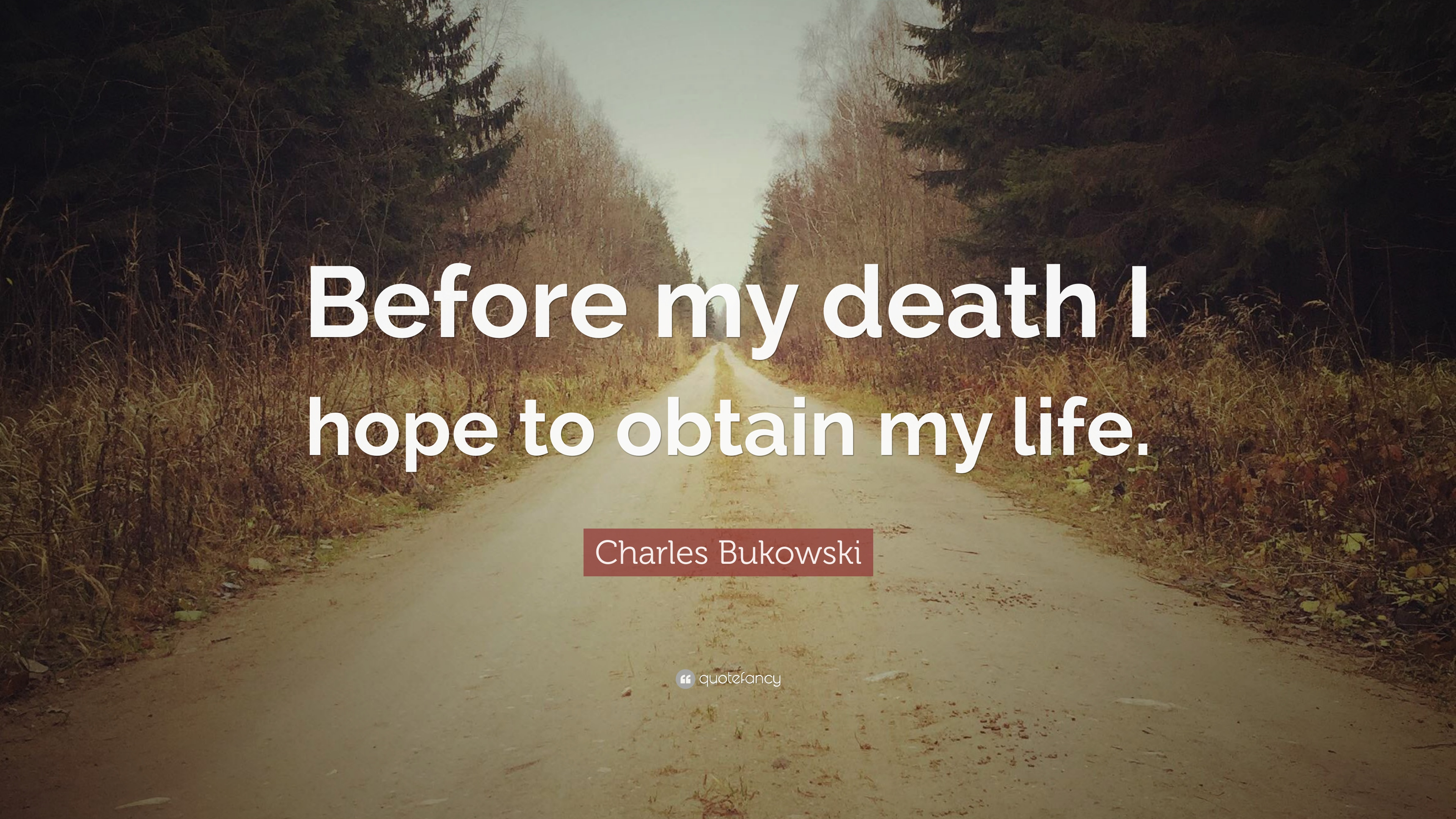 charles bukowski quotes 100 wallpapers quotefancy