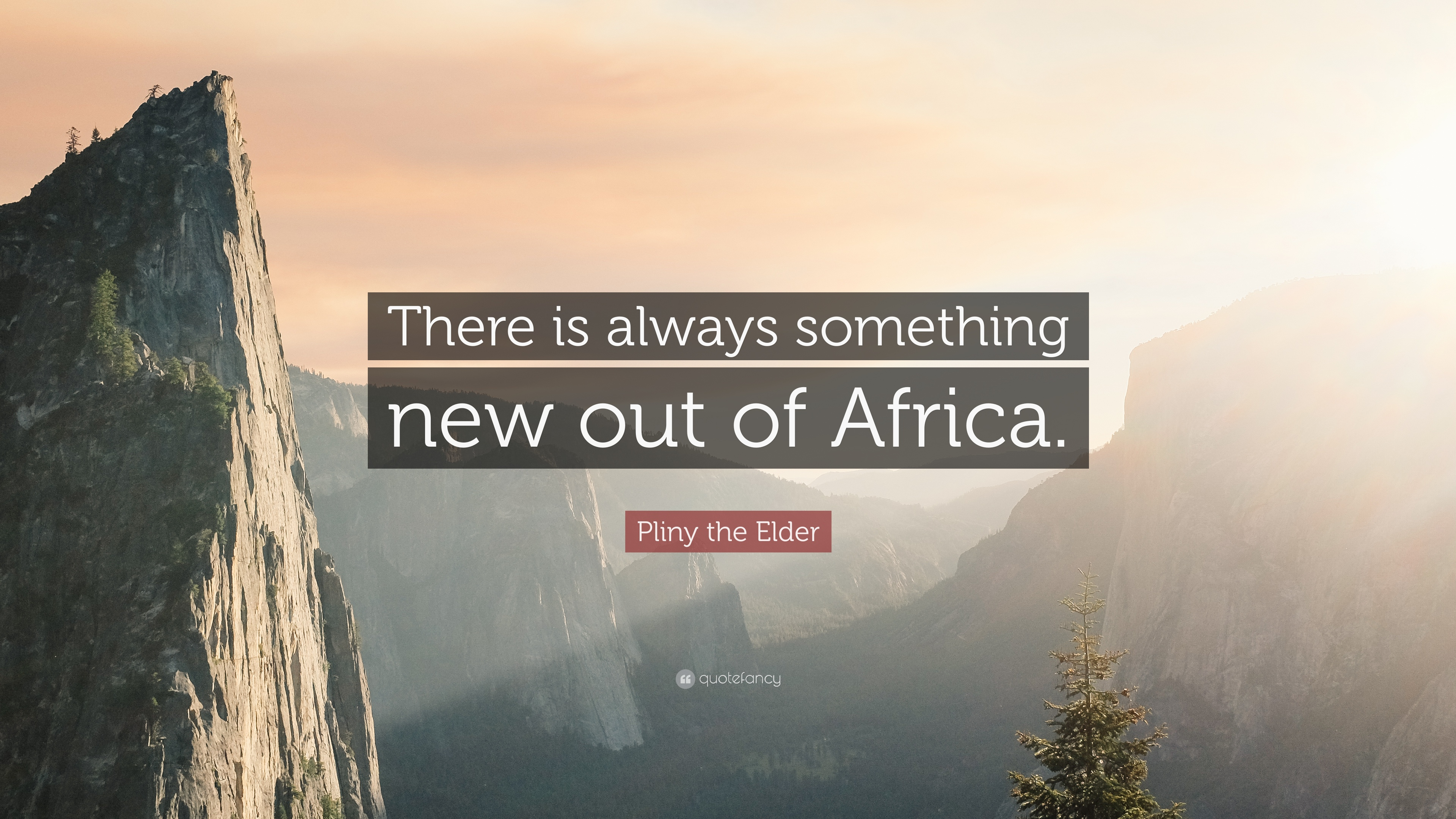"""Pliny The Elder Quotes: Pliny The Elder Quote: """"There Is Always Something New Out"""