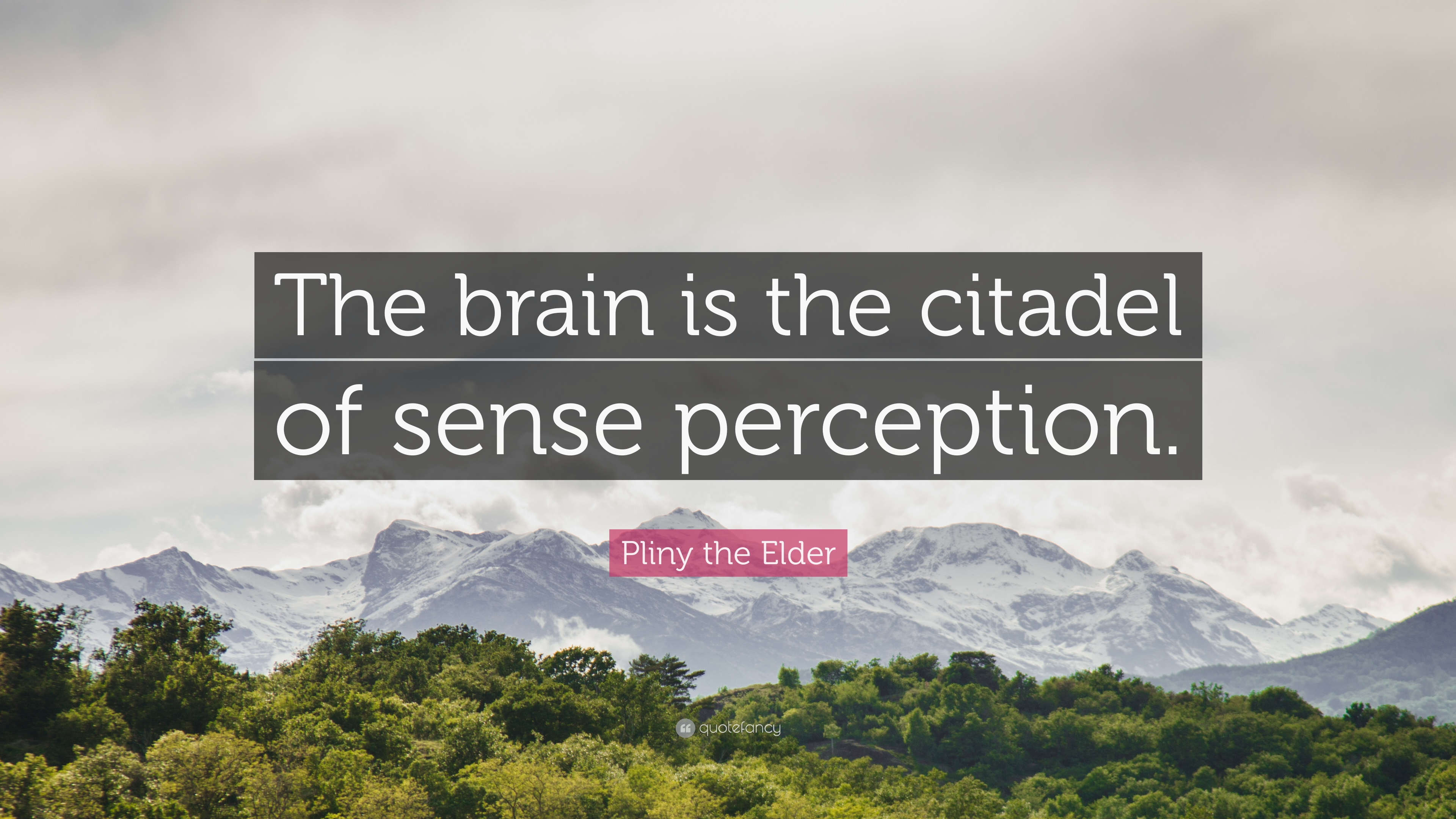 sense perception