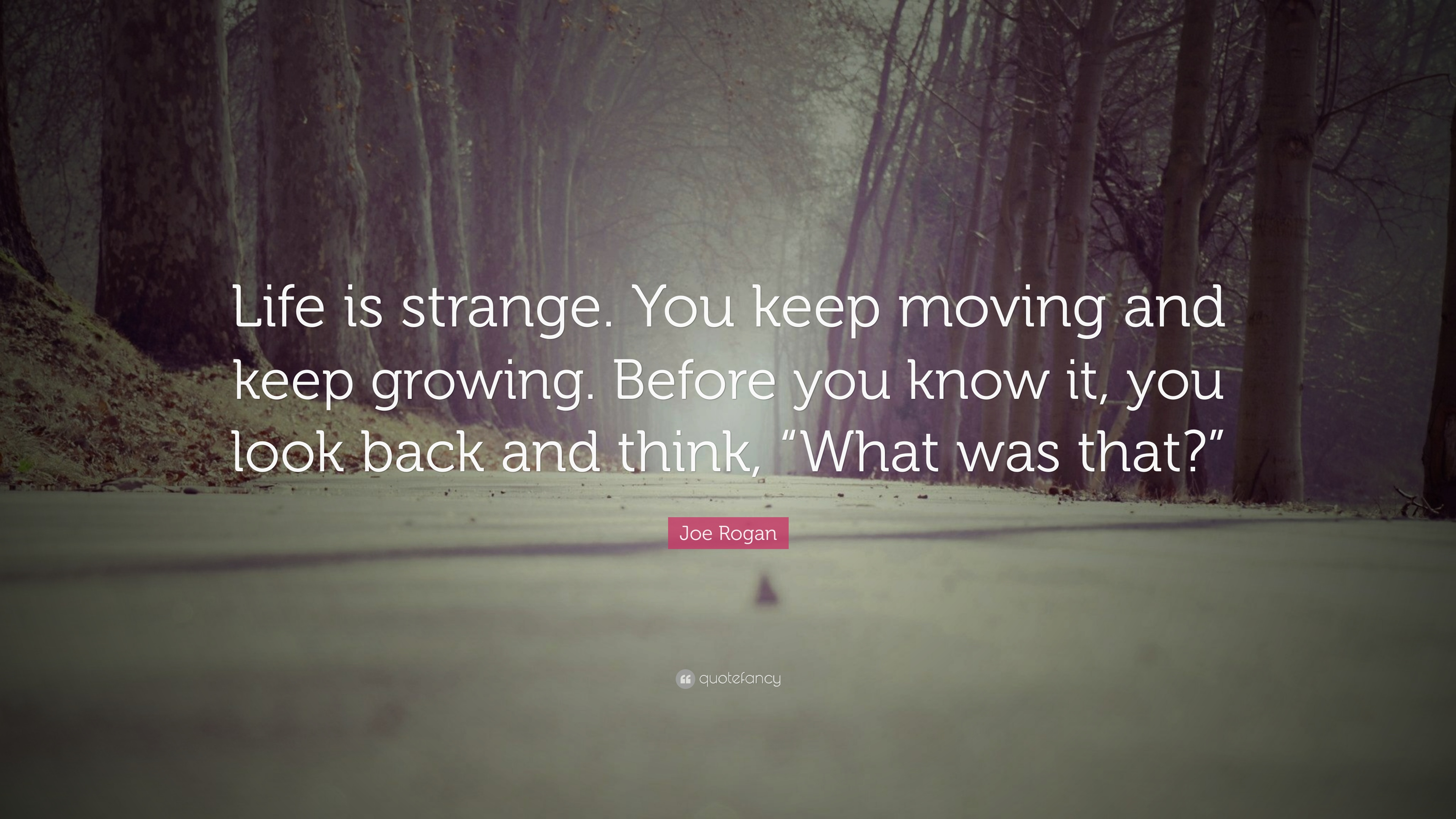 "Life Is Strange Quotes Joe Rogan Quote: ""Life is strange. You keep moving and keep  Life Is Strange Quotes"