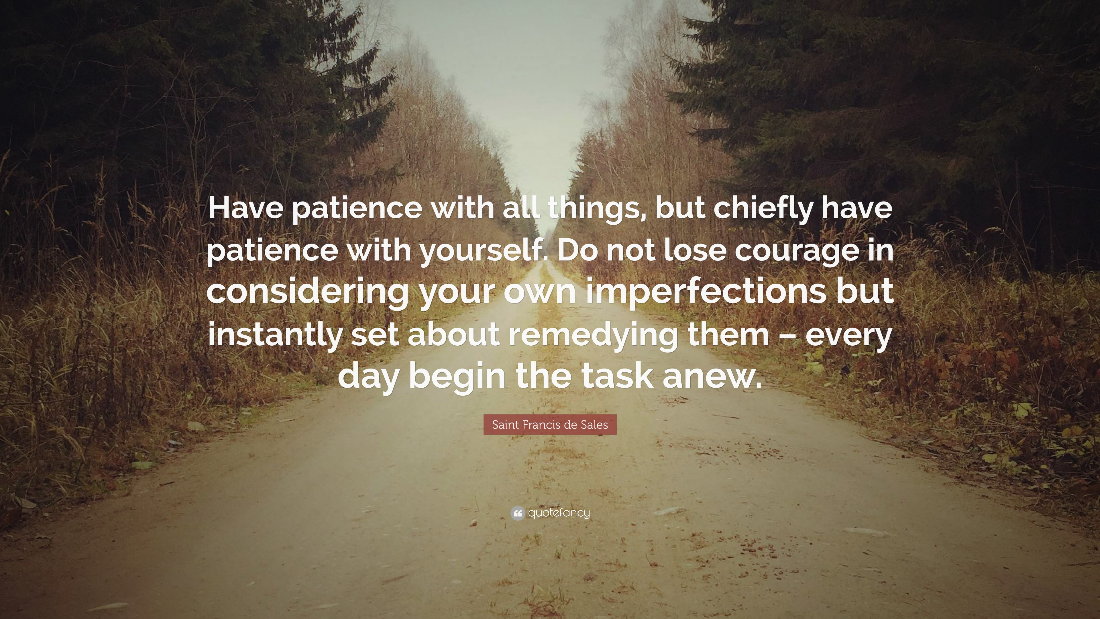 """Saint Francis de Sales Quote: """"Have patience with all things, but ..."""