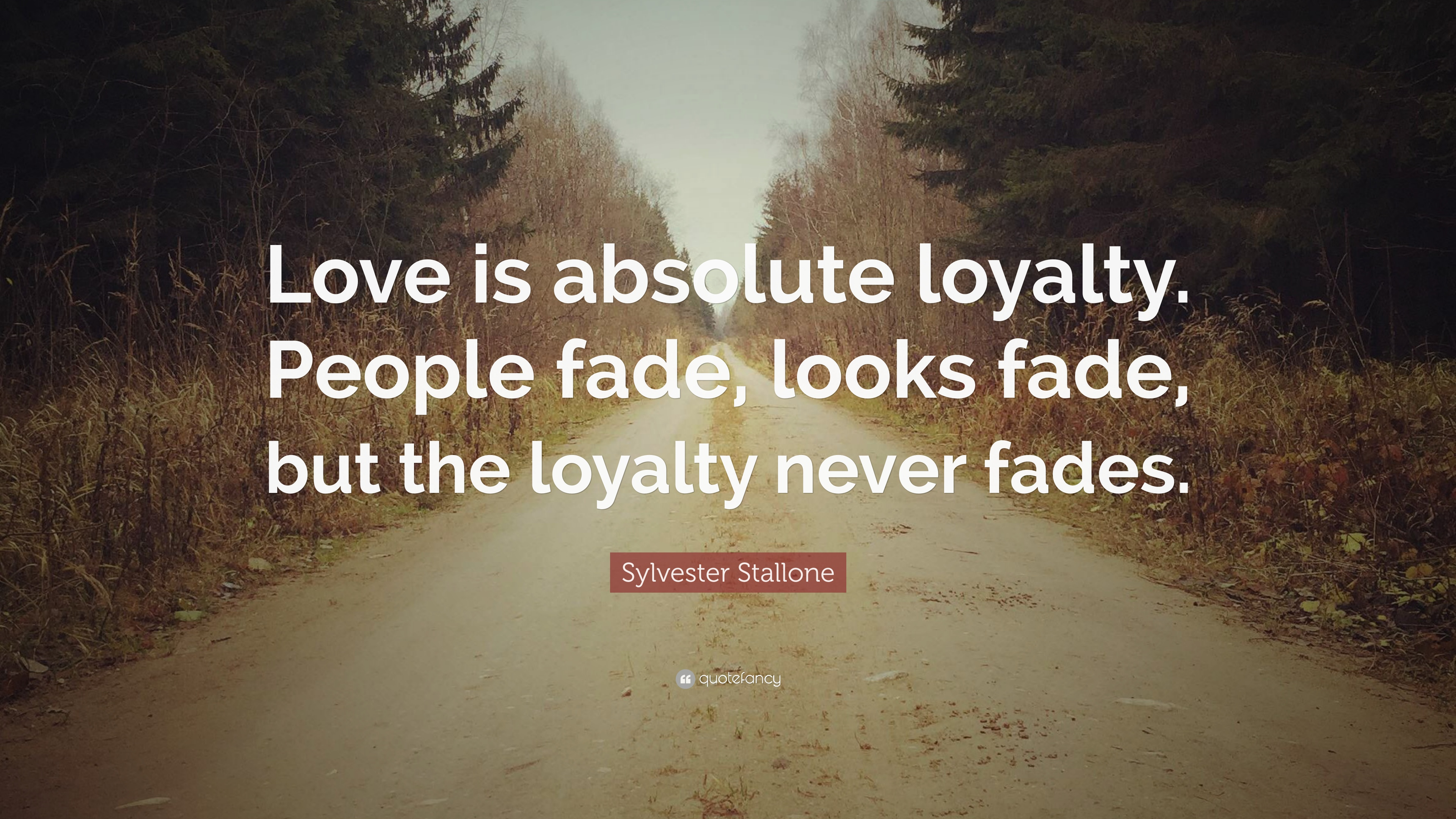 Quotes About Fading Love: Sylvester Stallone Quotes (100 Wallpapers)