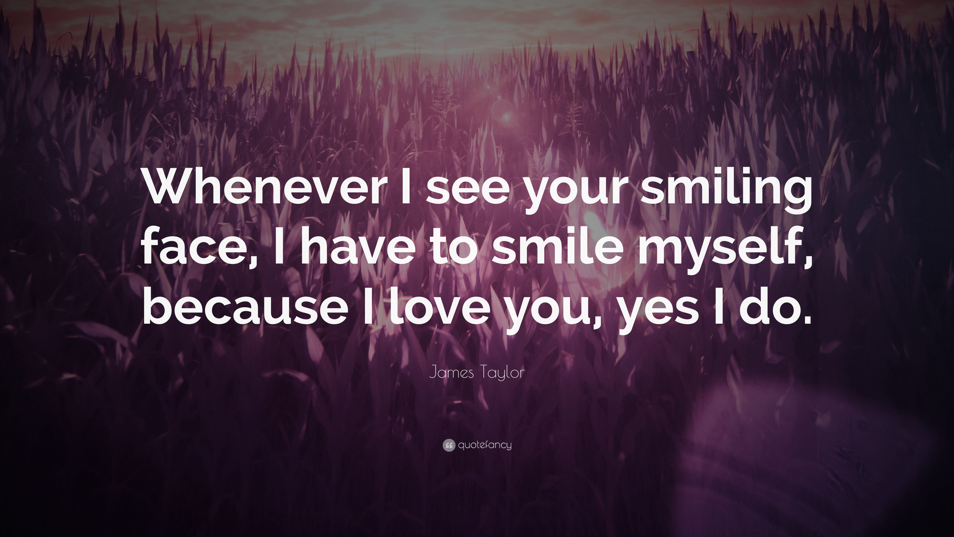 James Taylor Quote Whenever I See Your Smiling Face I Have To