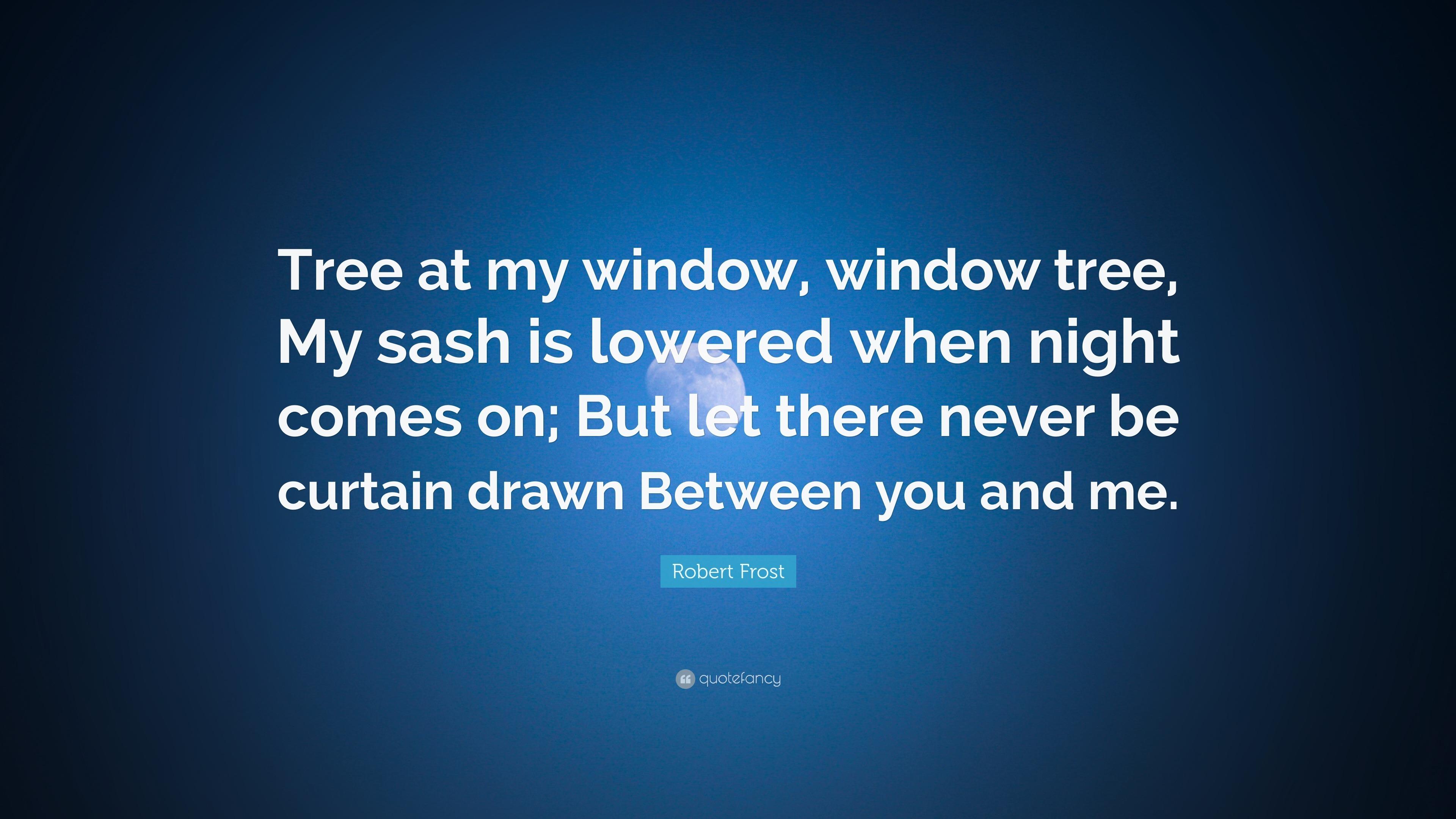 Tree at My Window Summary