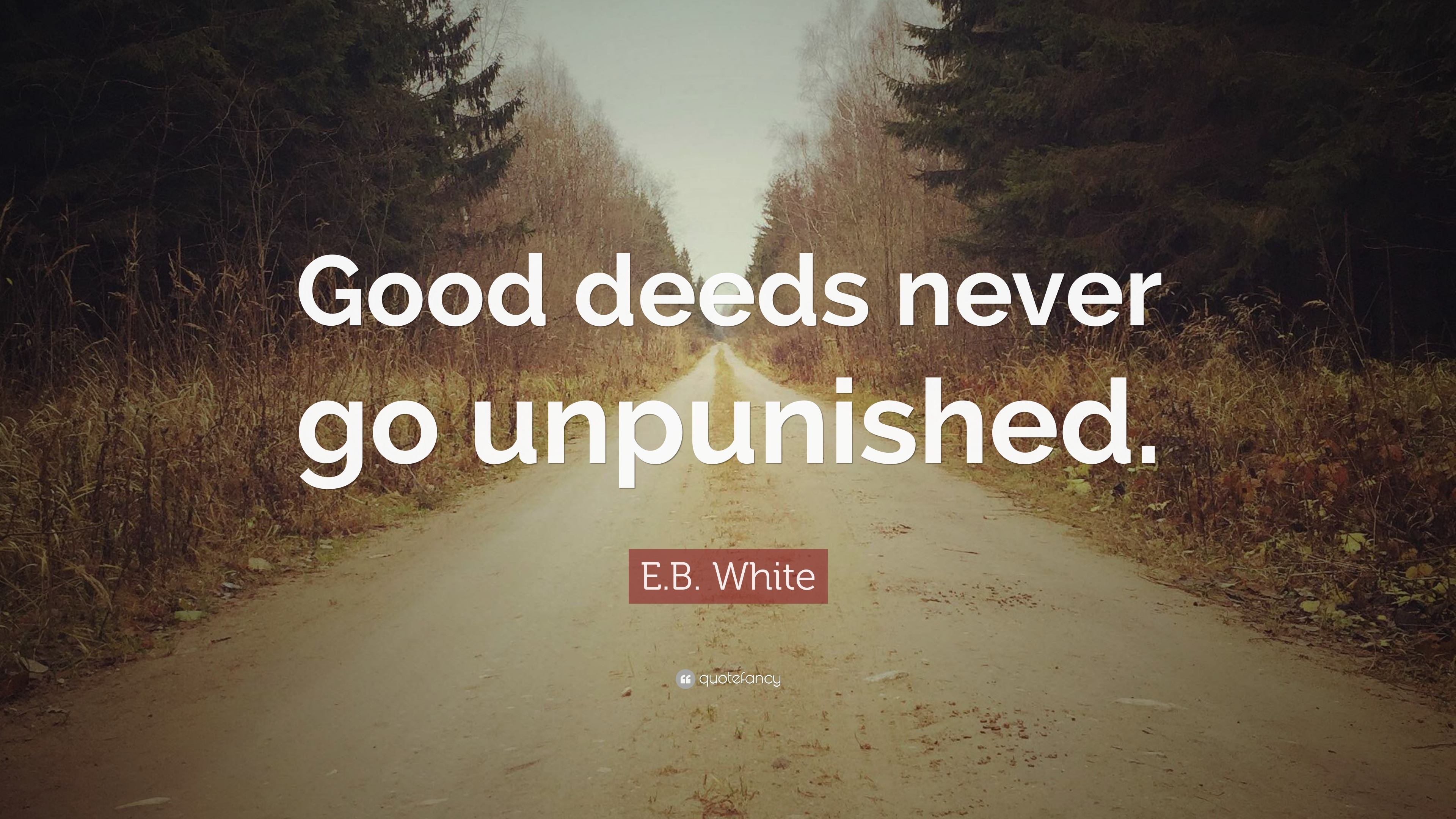 Eb White Quote Good Deeds Never Go Unpunished 7 Wallpapers