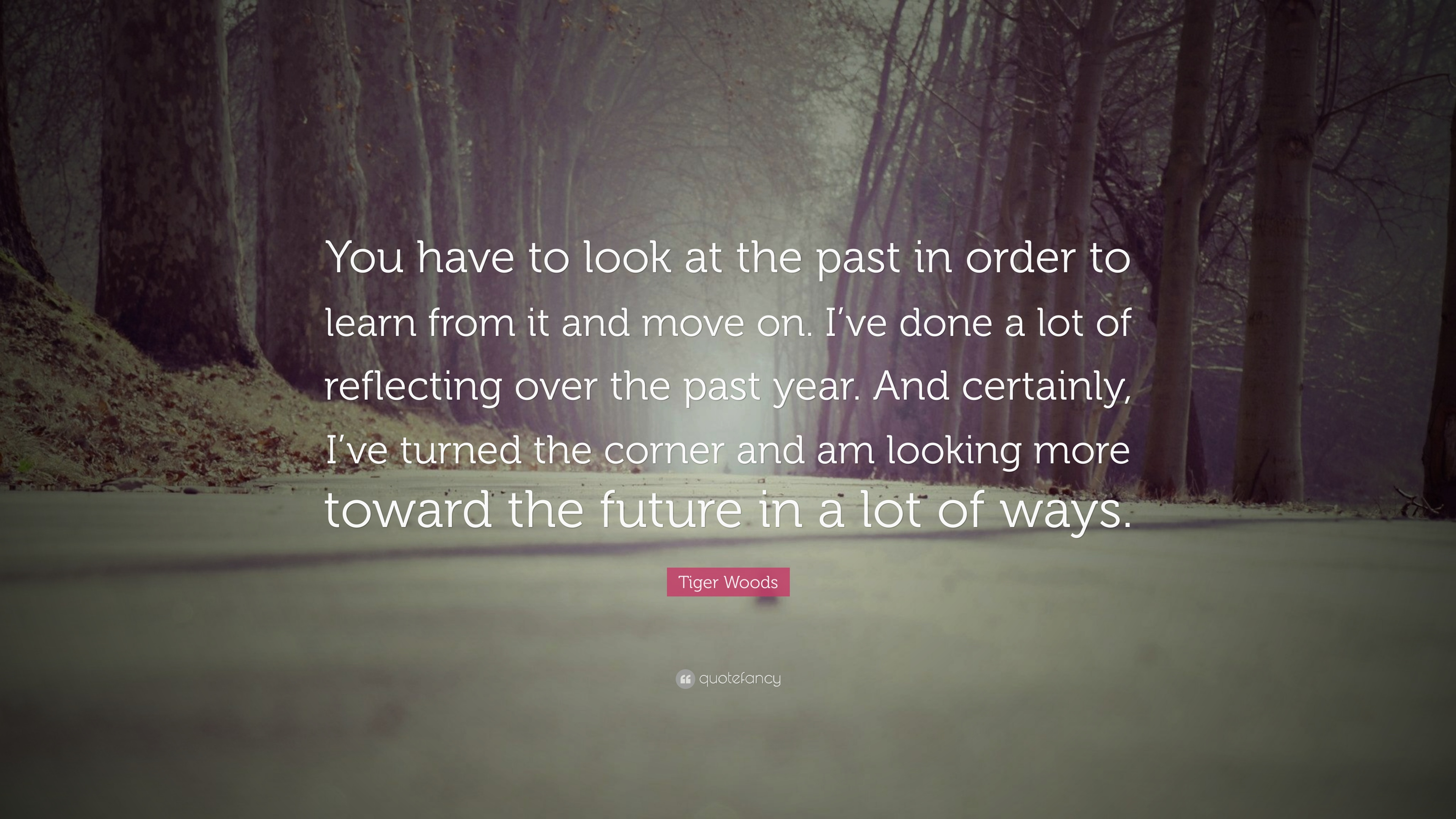Tiger Woods Quote You Have To Look At The Past In Order To Learn