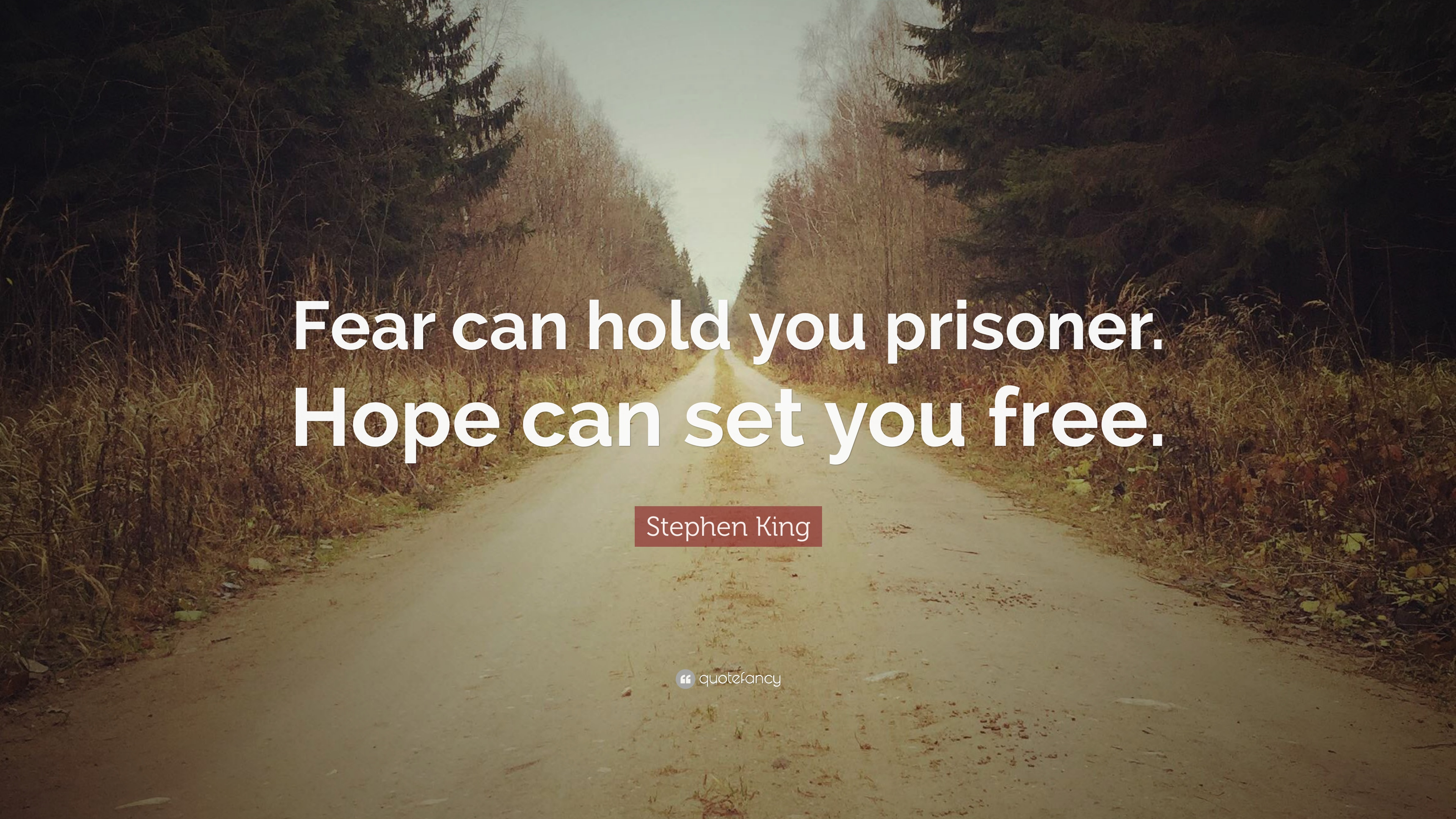 """Stephen King Quote: """"Fear Can Hold You Prisoner. Hope Can"""