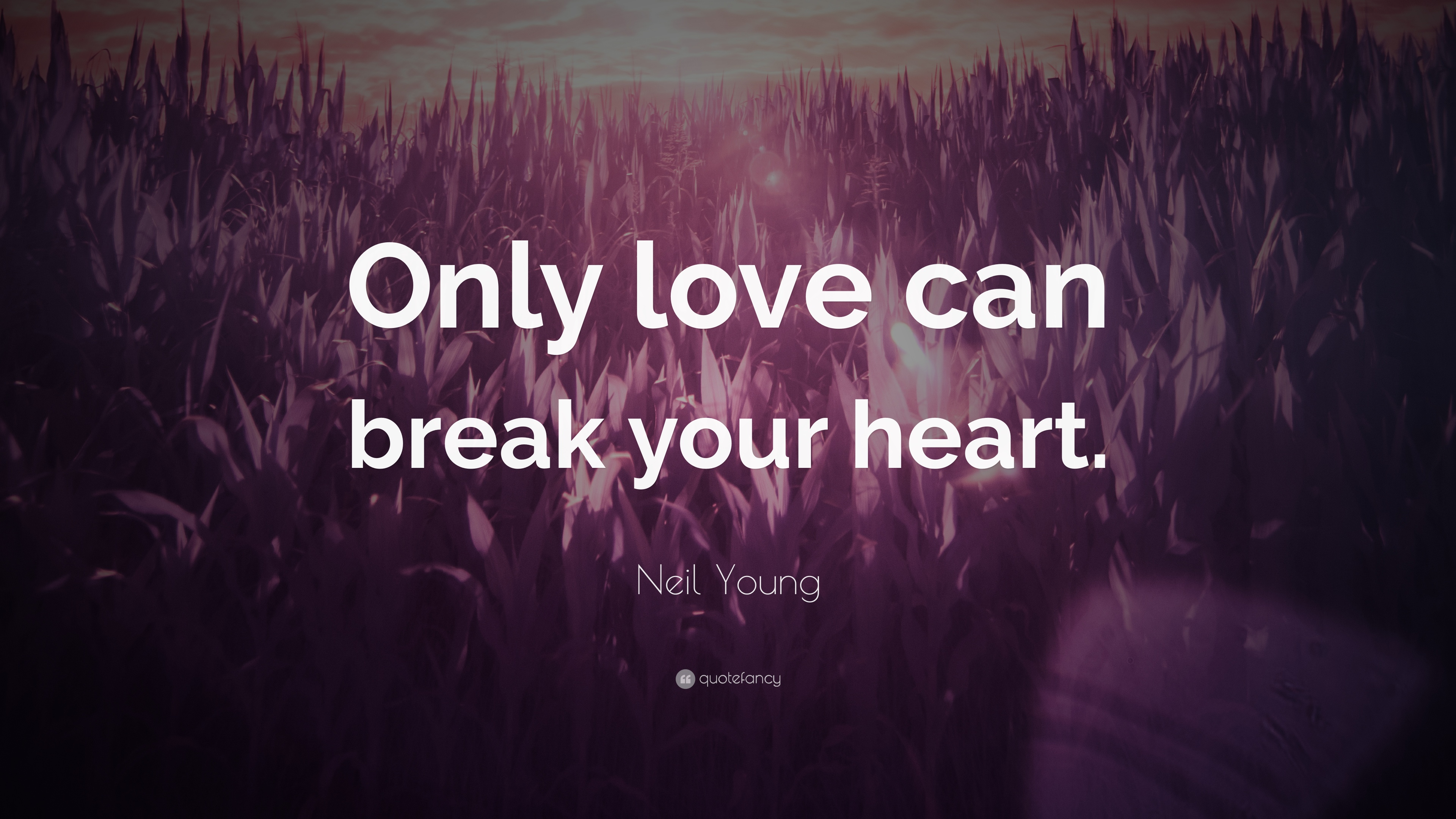 Neil Young Quote Only Love Can Break Your Heart 7 Wallpapers