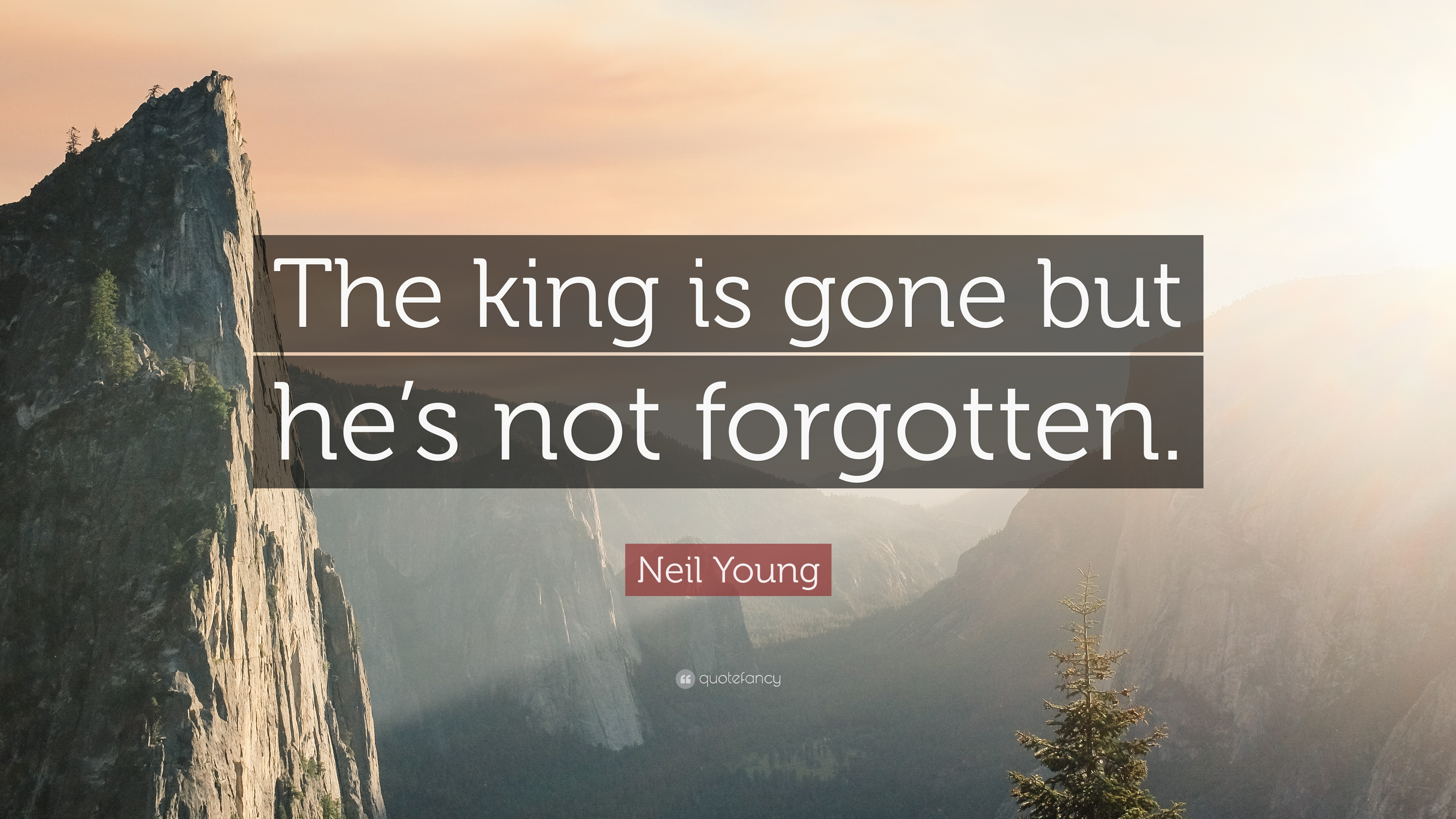 "Gone But Not Forgotten Quotes Neil Young Quote ""The King Is Gone But He's Not Forgotten."" 9"