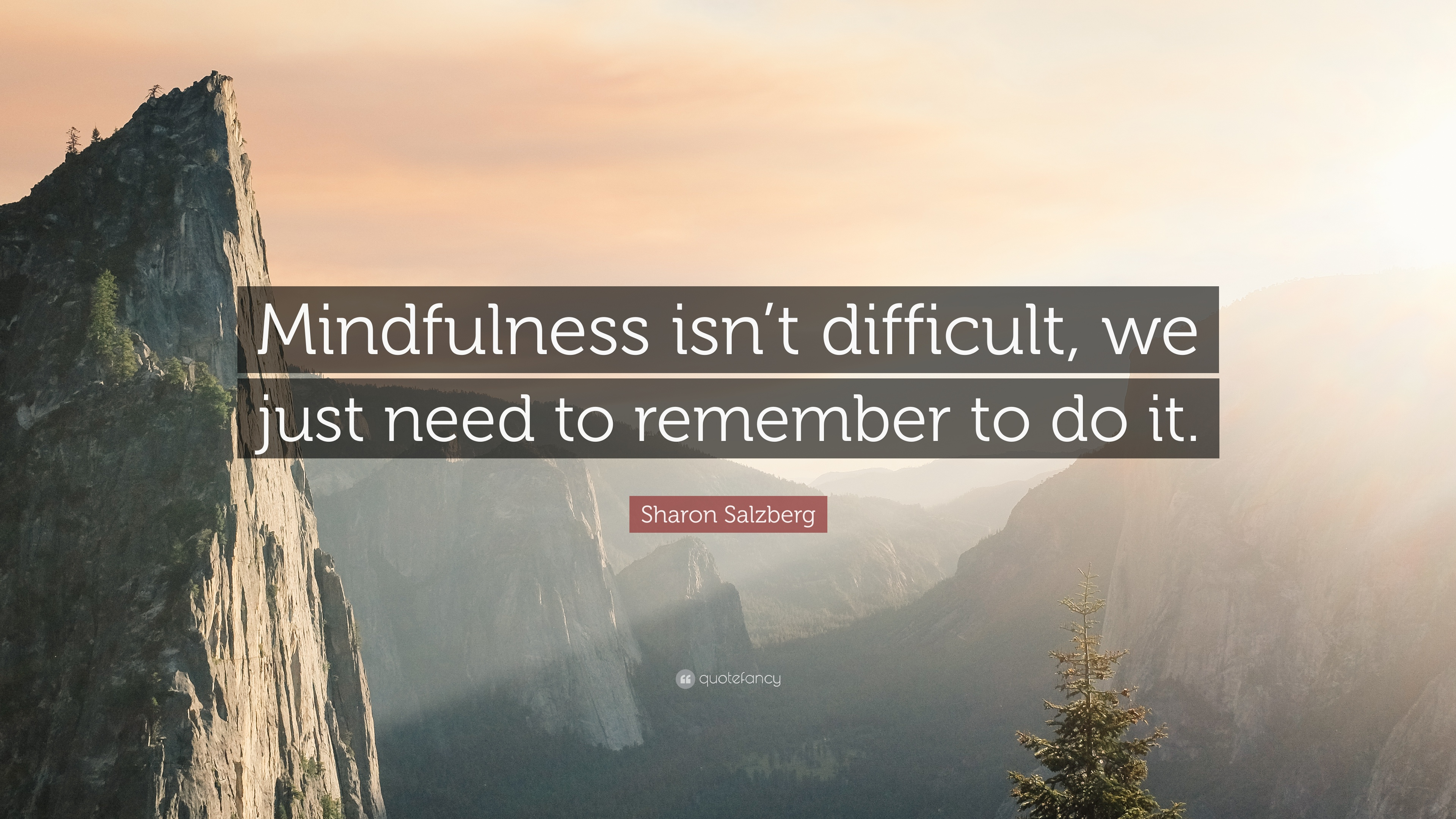 Quotes About Mindfulness Mindfulness Quotes 40 Wallpapers  Quotefancy
