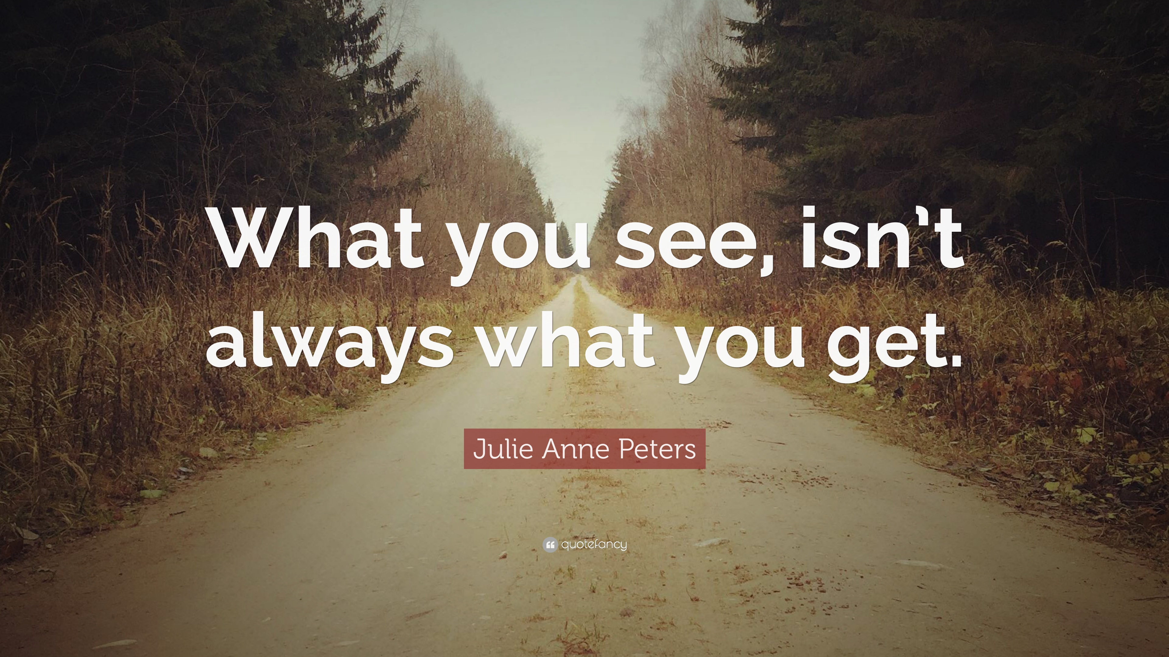 Julie Anne Peters Quote What You See Isnt Always What You Get