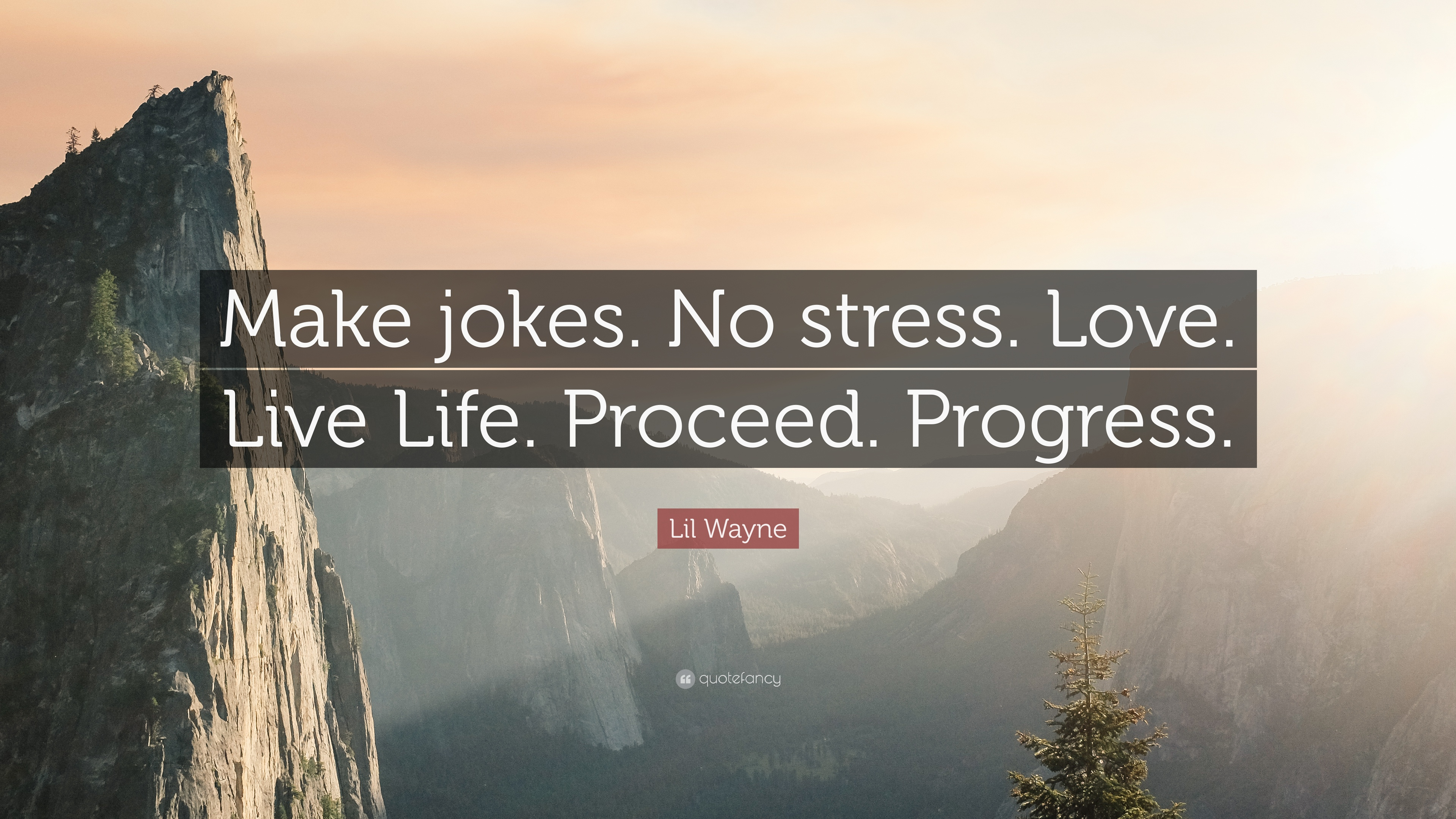 Stress Quotes: U201cMake Jokes. No Stress. Love. Live Life. Proceed