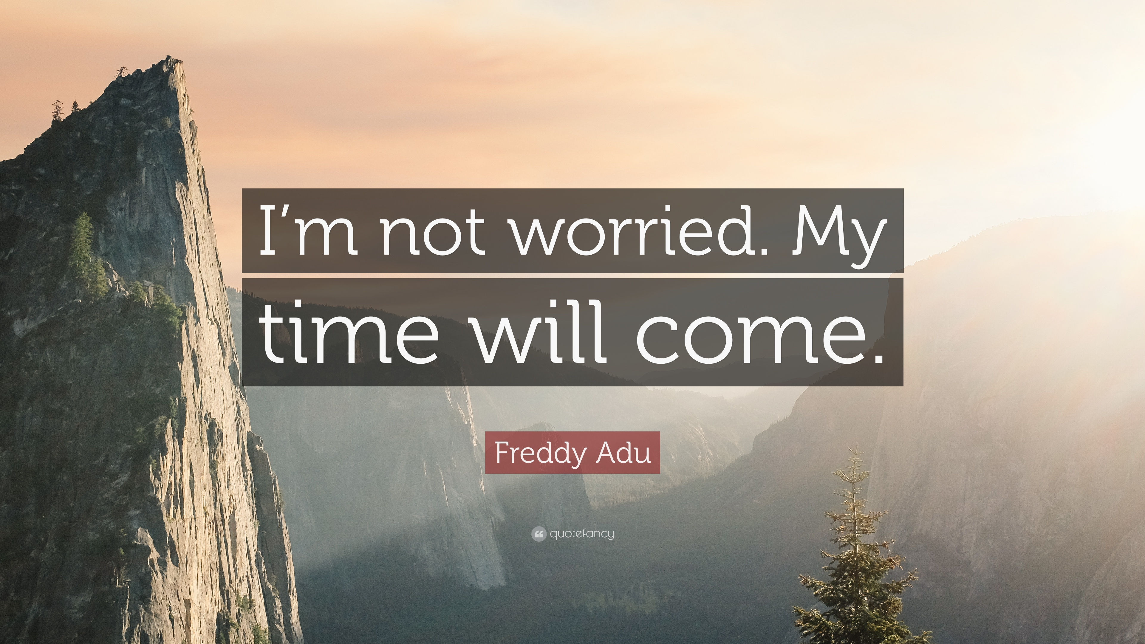 Freddy Adu Quote Im Not Worried My Time Will Come 9