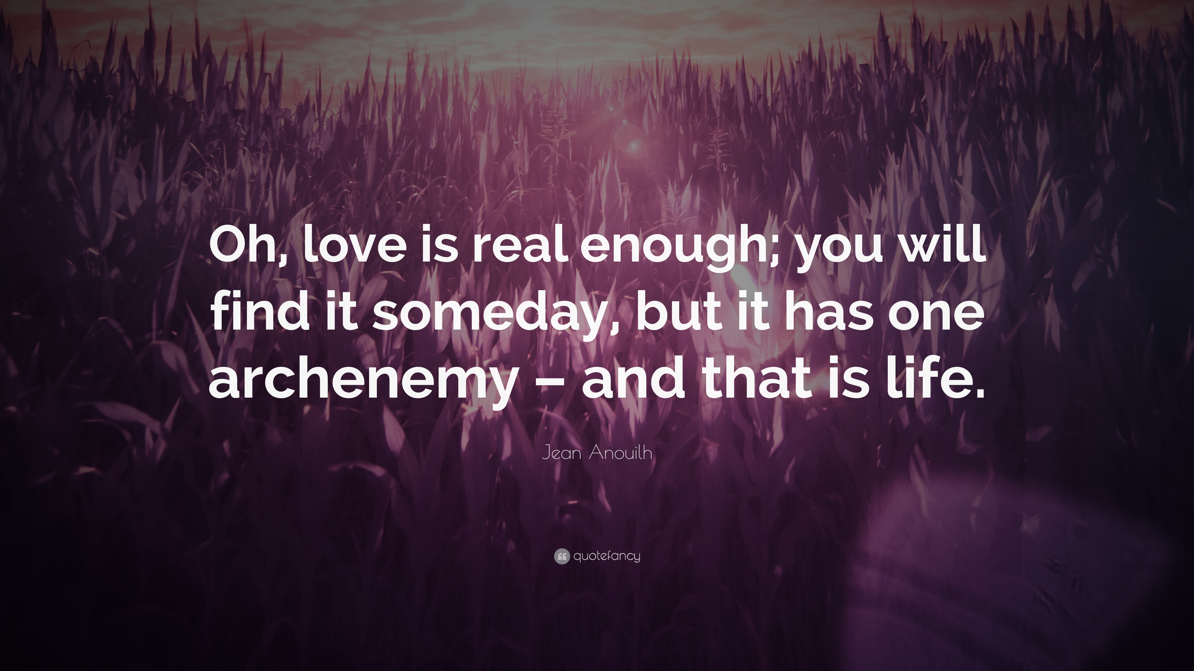 Someday Love Will Find You Quotes Ssmatters