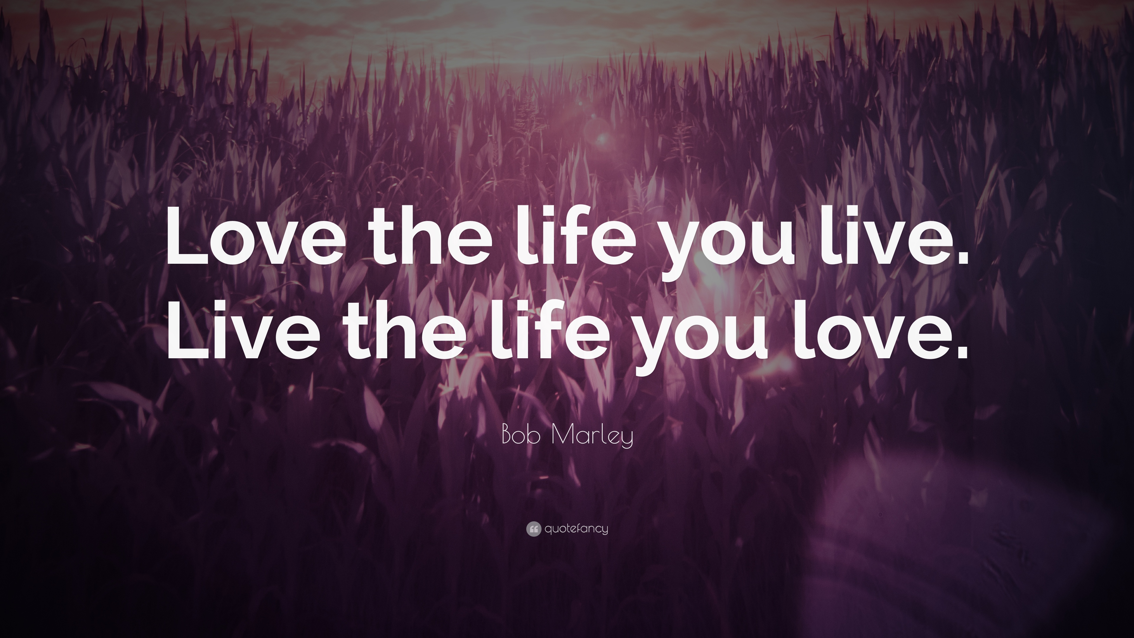 """Bob Marley Quote: """"Love The Life You Live. Live The Life"""