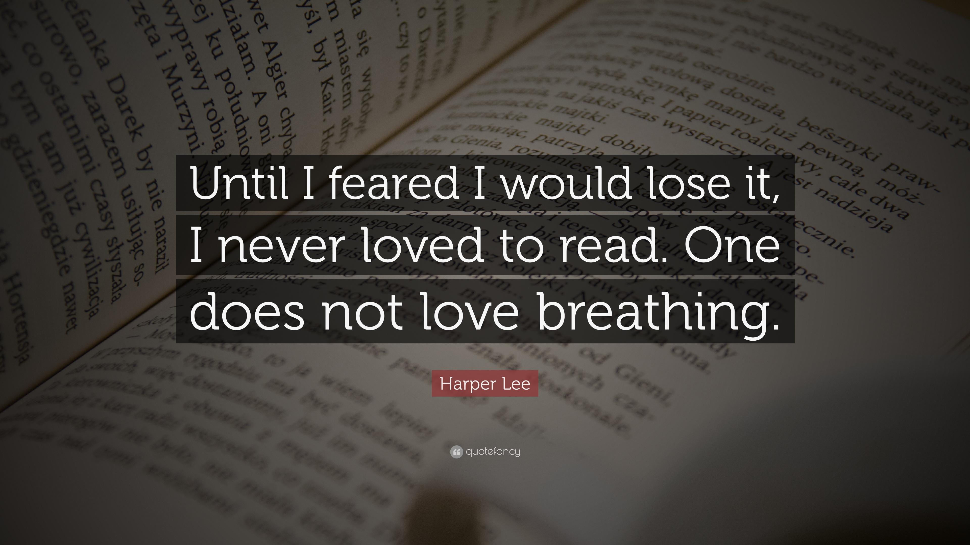 "Harper Lee Quote ""Until I feared I would lose it I never loved"