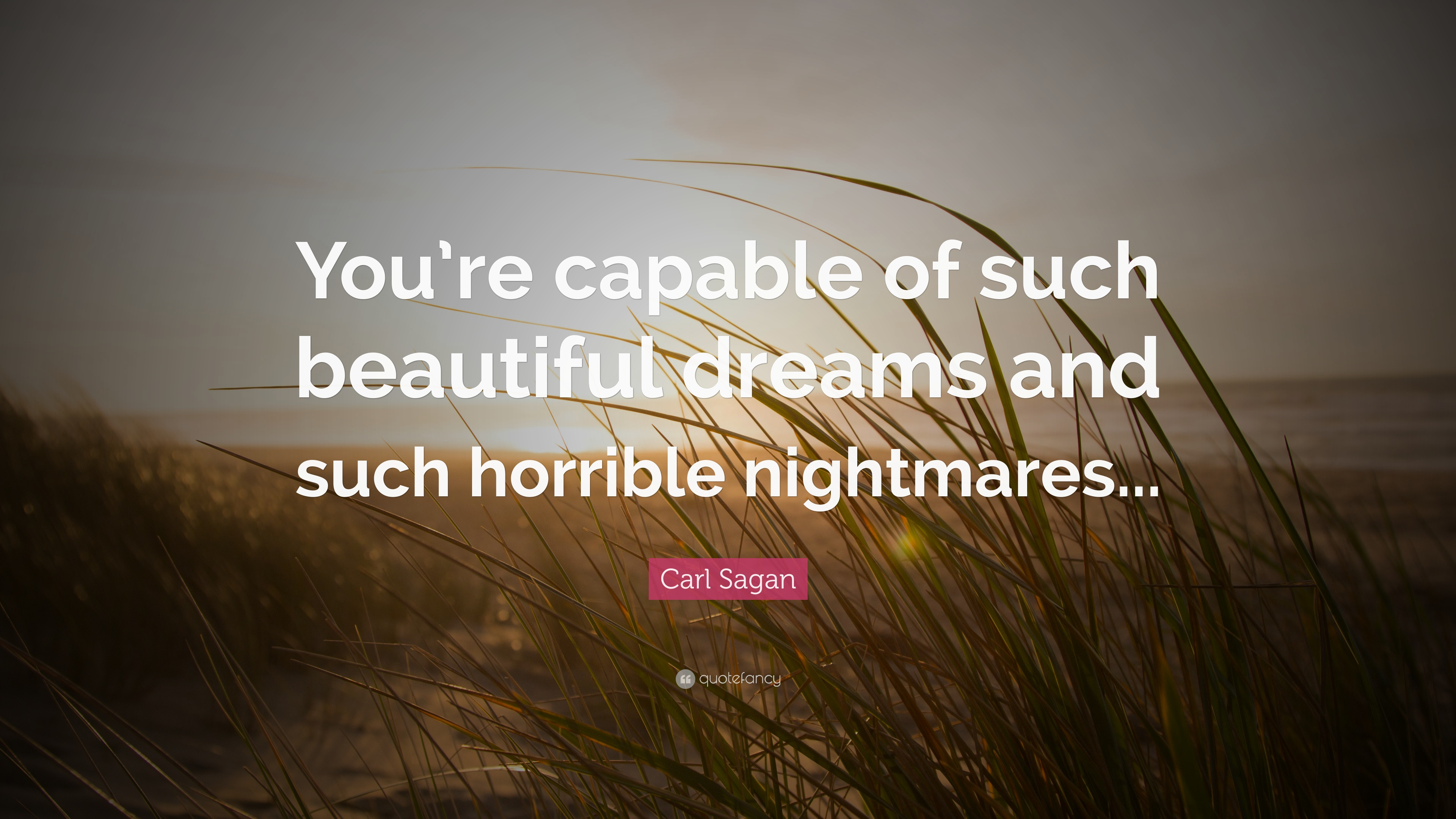 "Carl Sagan Love Quote Extraordinary Carl Sagan Quote ""You're Capable Of Such Beautiful Dreams And"