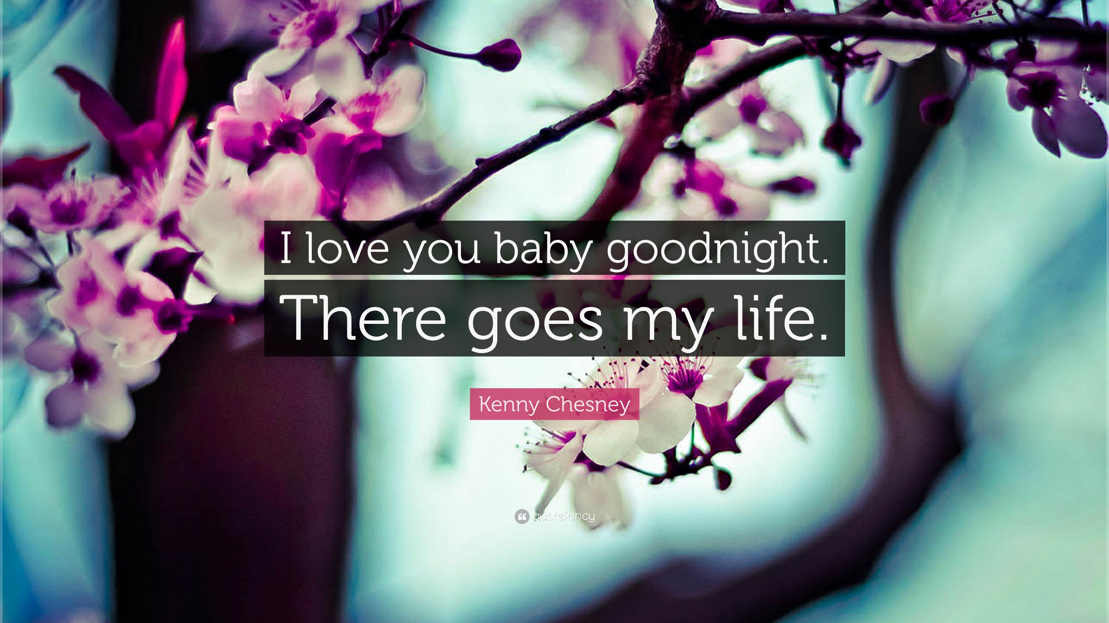 Kenny Chesney Quote I Love You Baby Goodnight There Goes My Life