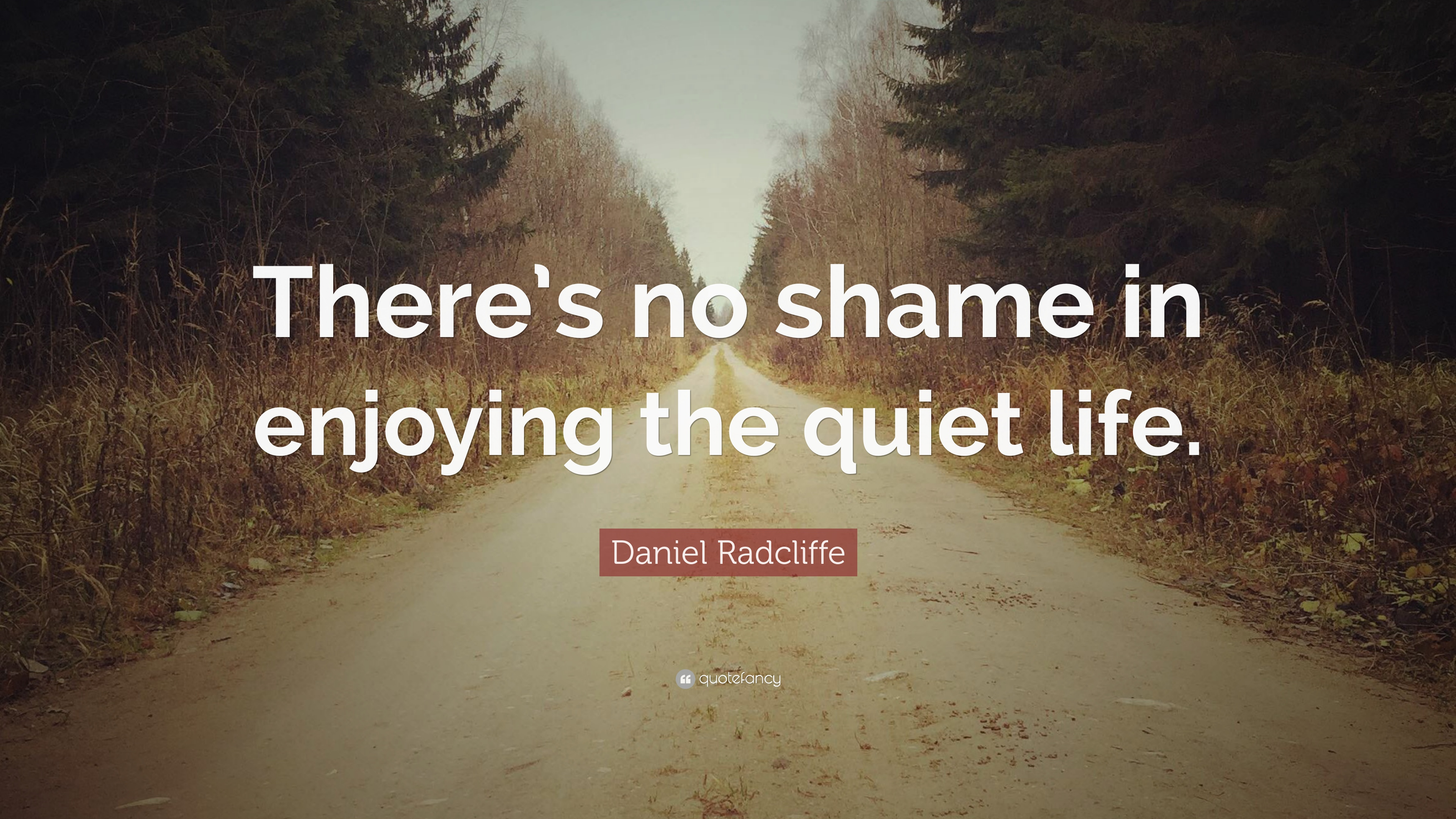 Daniel Radcliffe Quote There S No Shame In Enjoying The Quiet Life