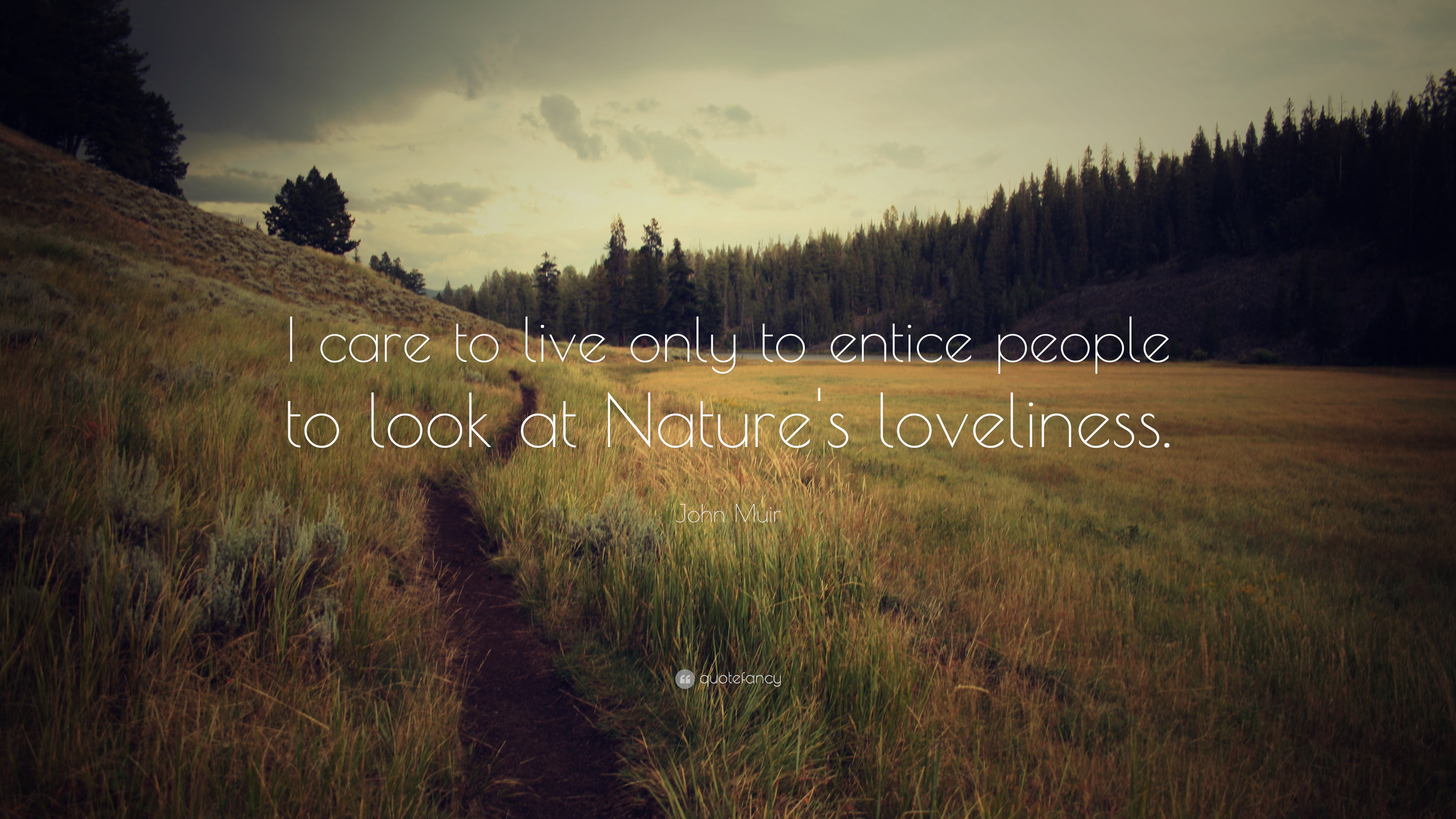 John Muir Quote I Care To Live Only To Entice People To Look At