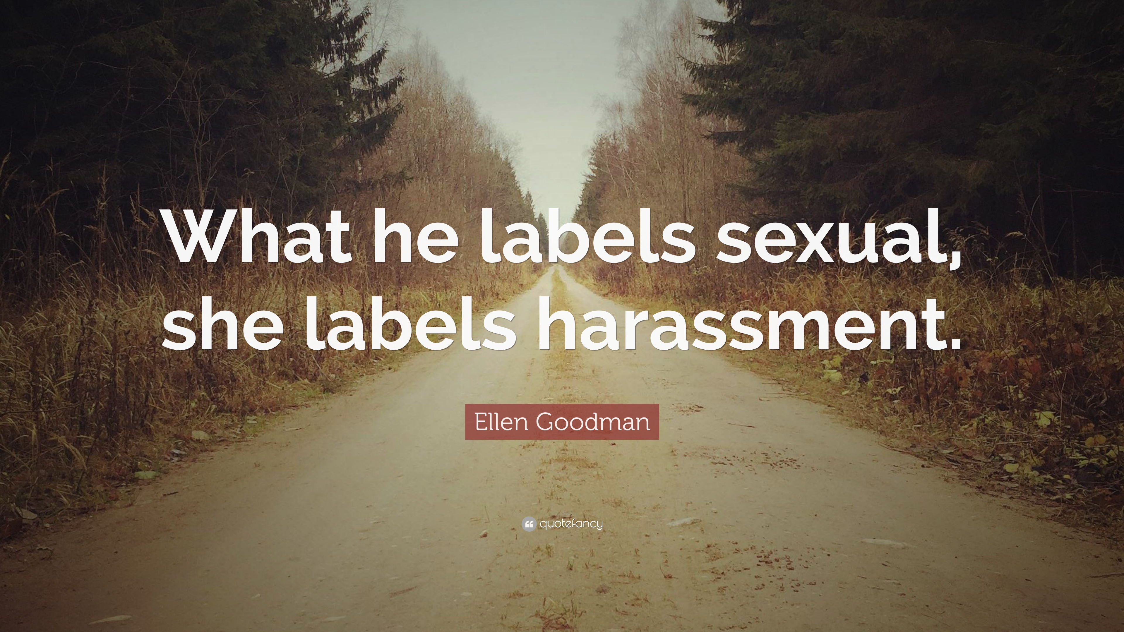 Ellen Goodman Quote What He Labels Sexual She Harassment
