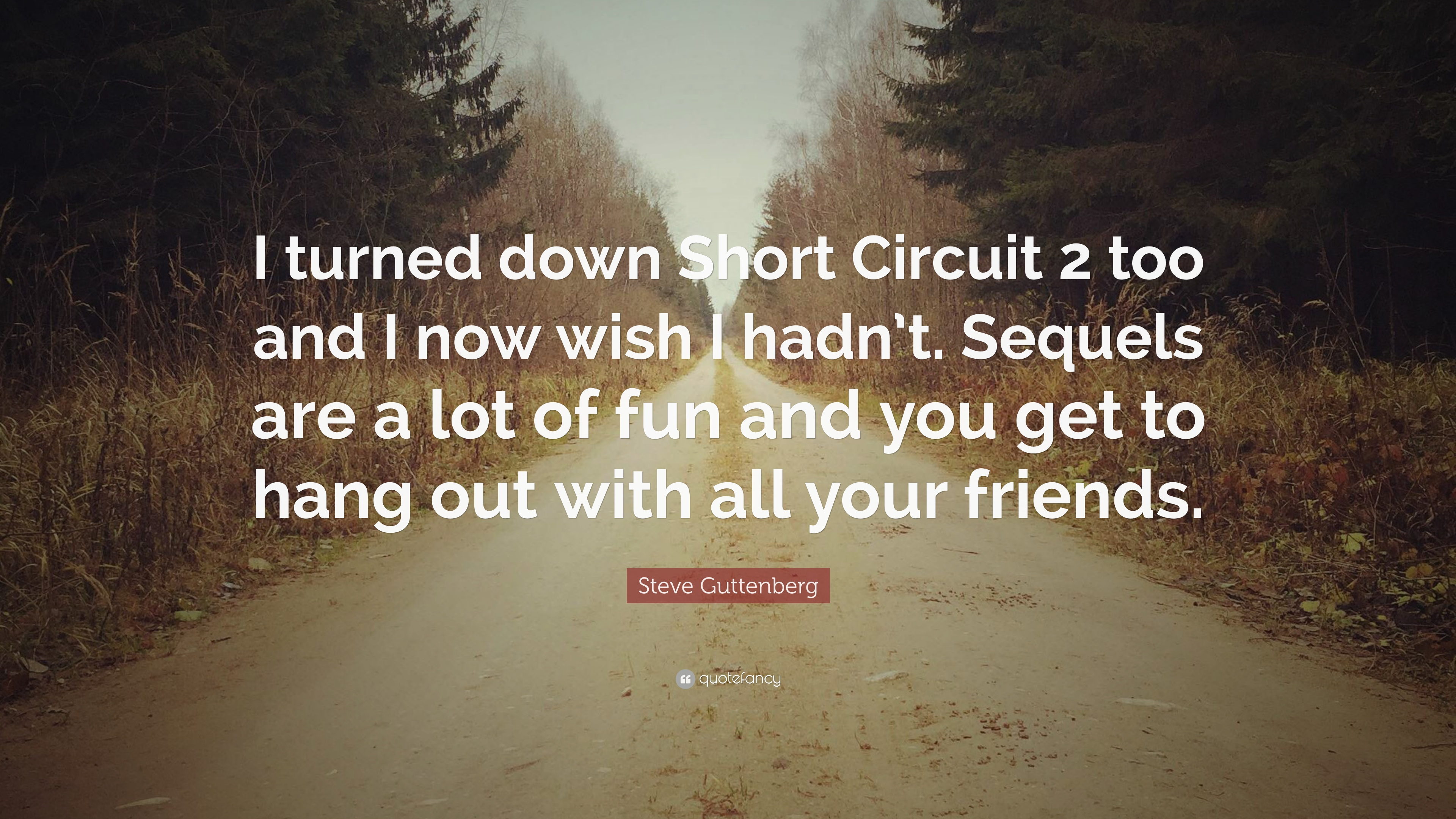 """Hanging Out With Friends Quotes: Steve Guttenberg Quote: """"I Turned Down Short Circuit 2 Too"""