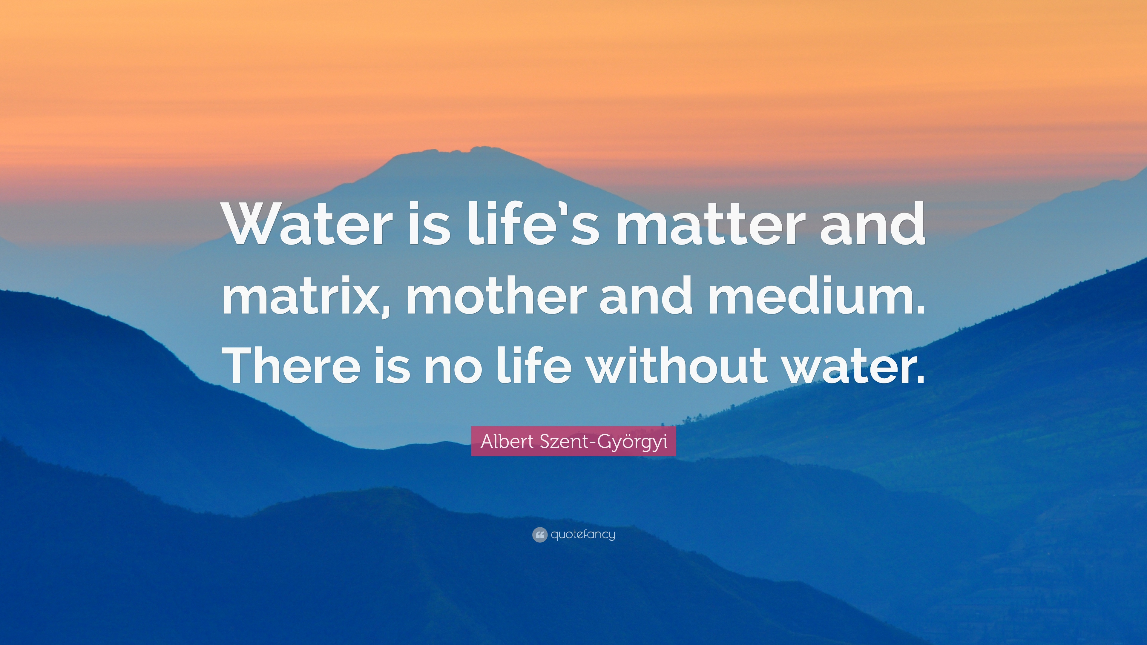 "Water Is Life Quote Albert Szentgyörgyi Quote ""Water Is Life's Matter And Matrix"