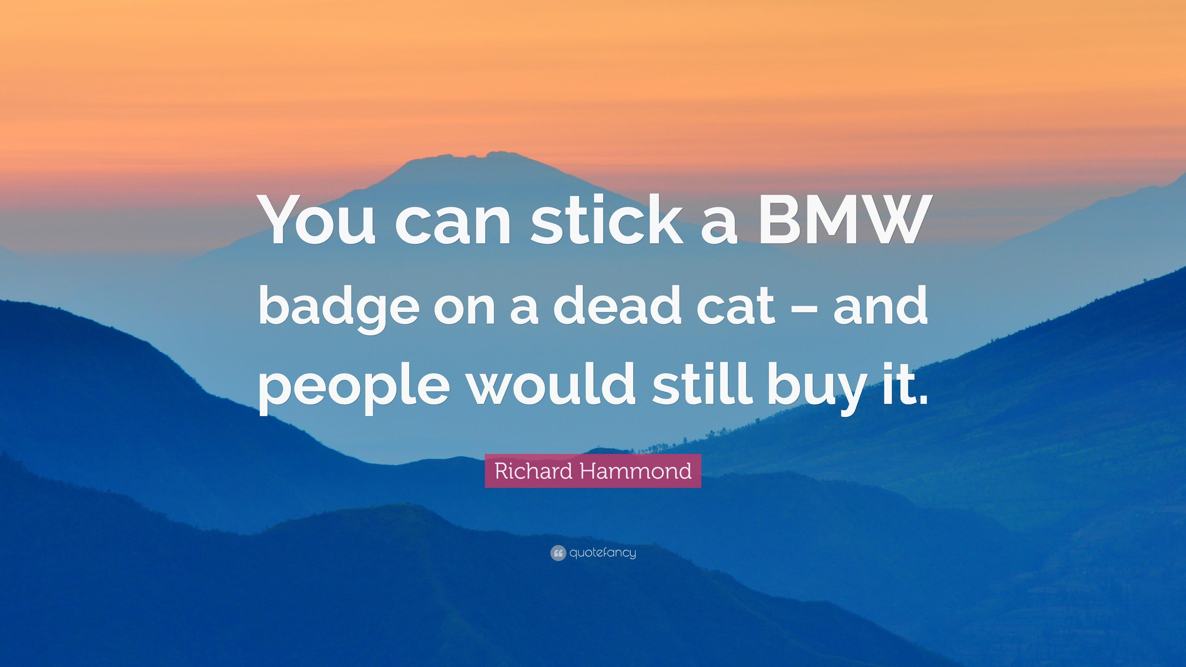 Best Bmw Quotes Wallpaper Pics