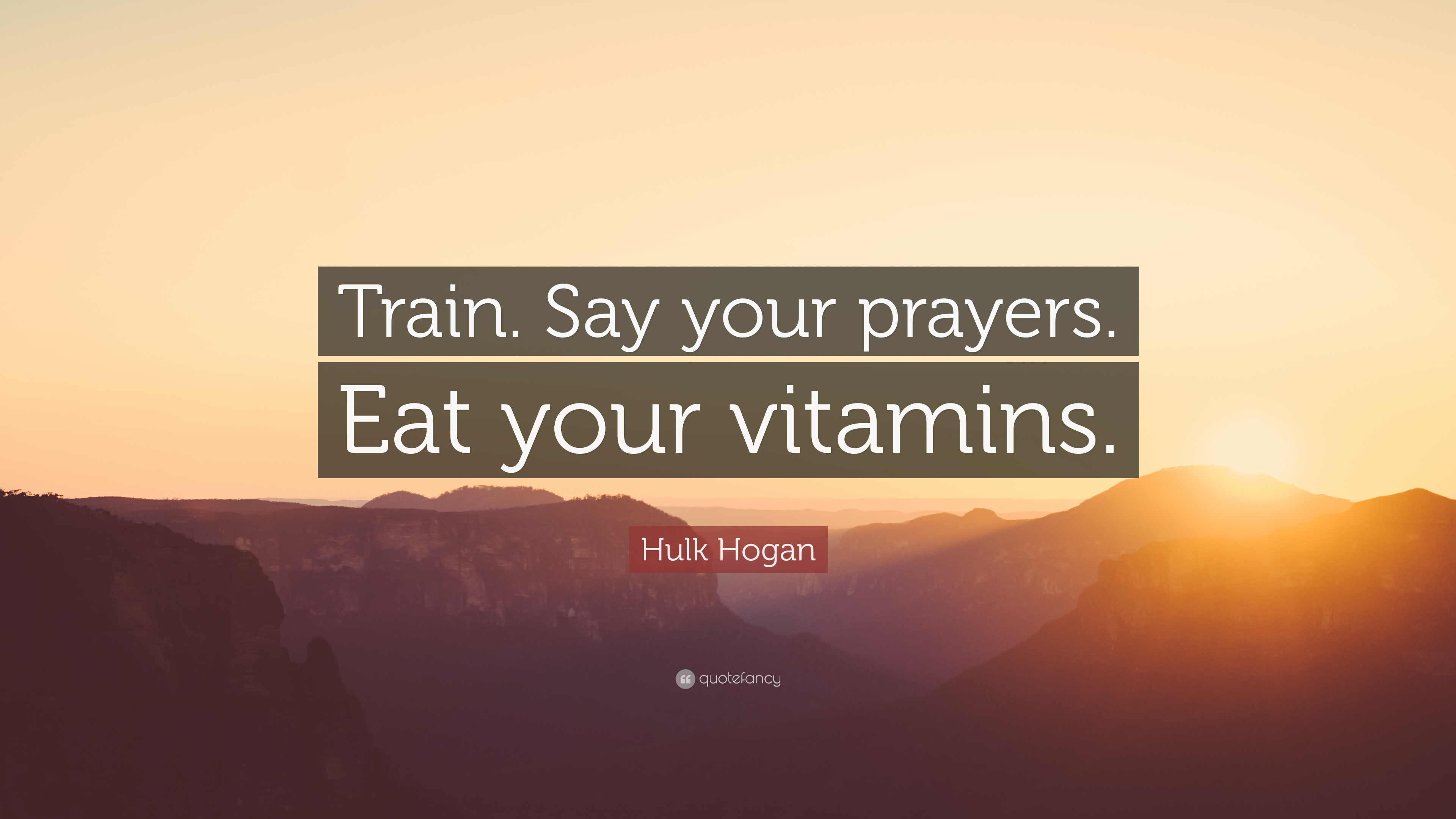 Hulk Hogan Quotes Say Your Prayers
