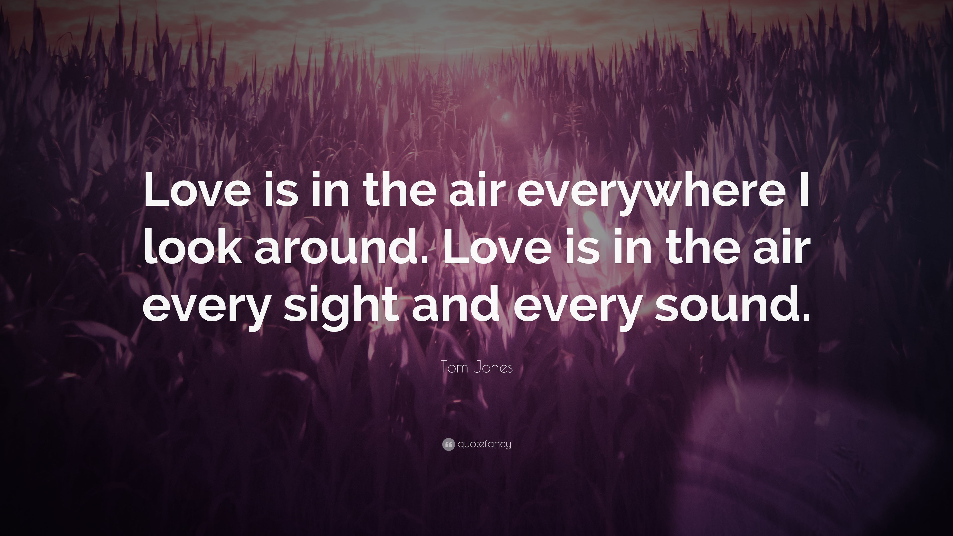 """Tom Jones Quote: """"Love Is In The Air Everywhere I Look"""
