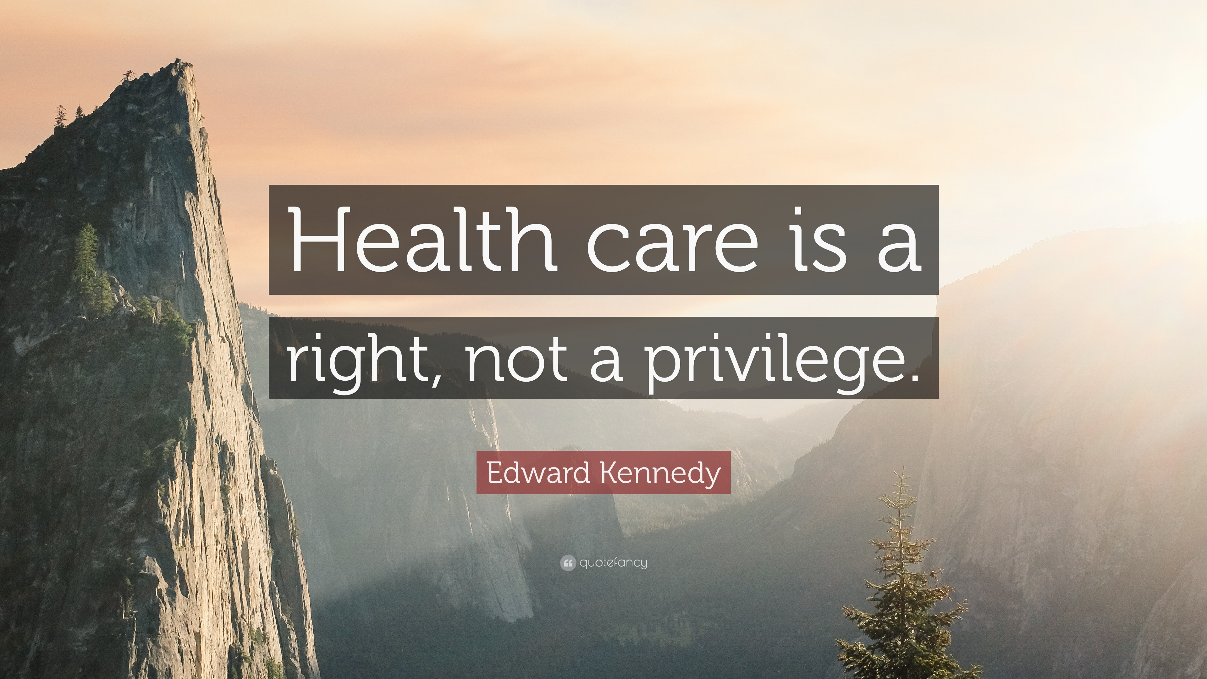Healthcare Quotes | Edward Kennedy Quote Health Care Is A Right Not A Privilege 9